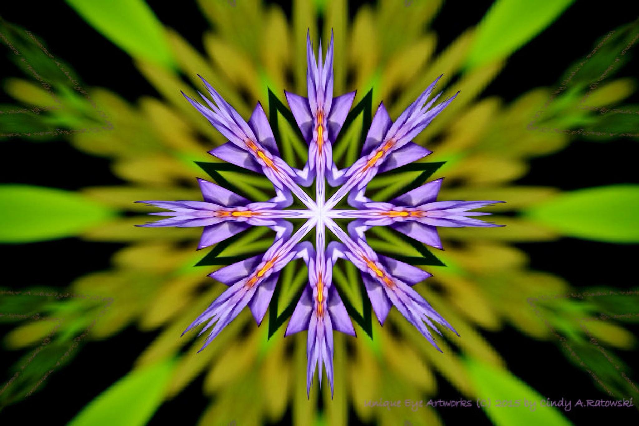 Flower Explosion by cindyaratowski