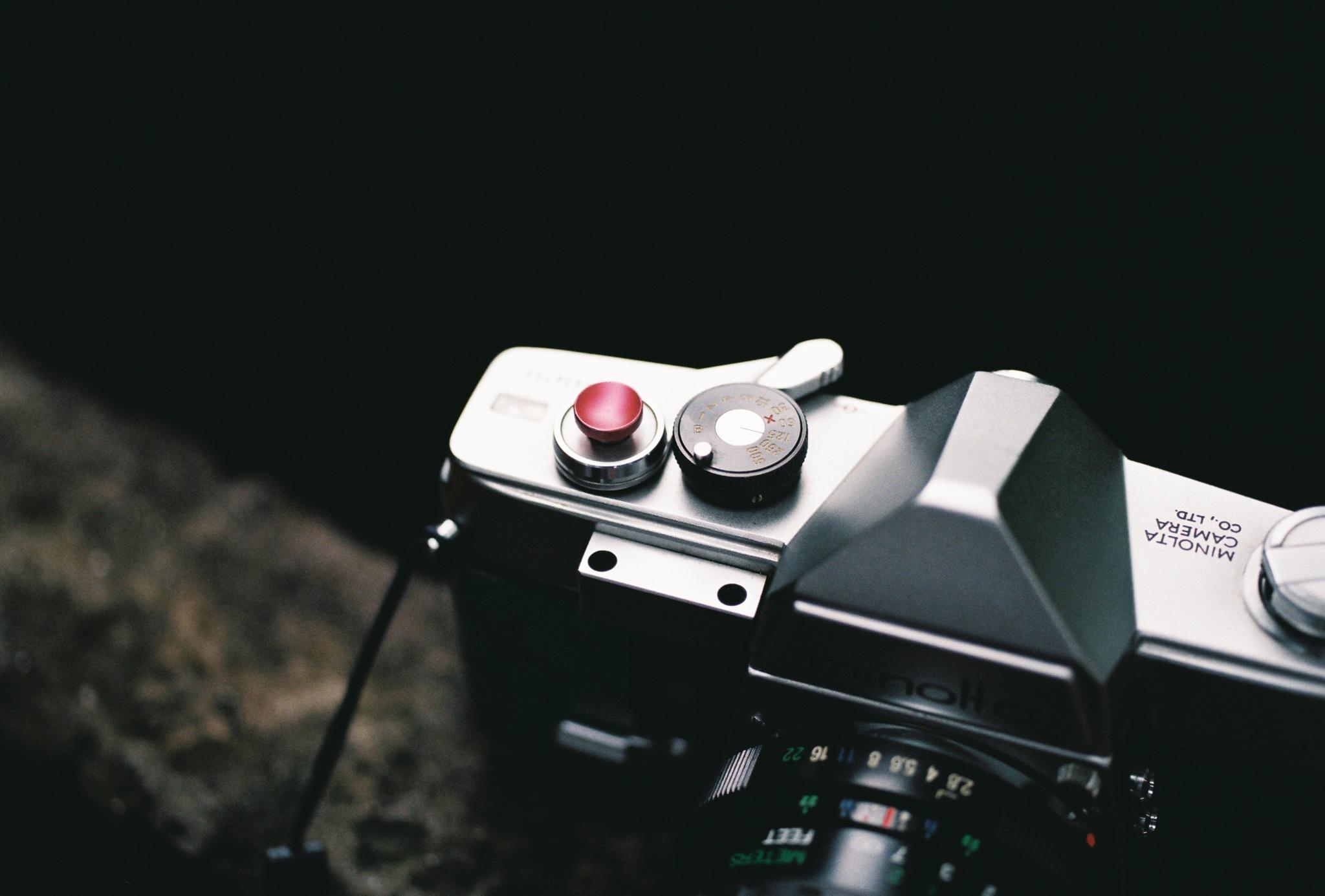 Minolta Sweet + Minolta Macro 50f2.8 + Fuji C200 by Hieu Pham Trong