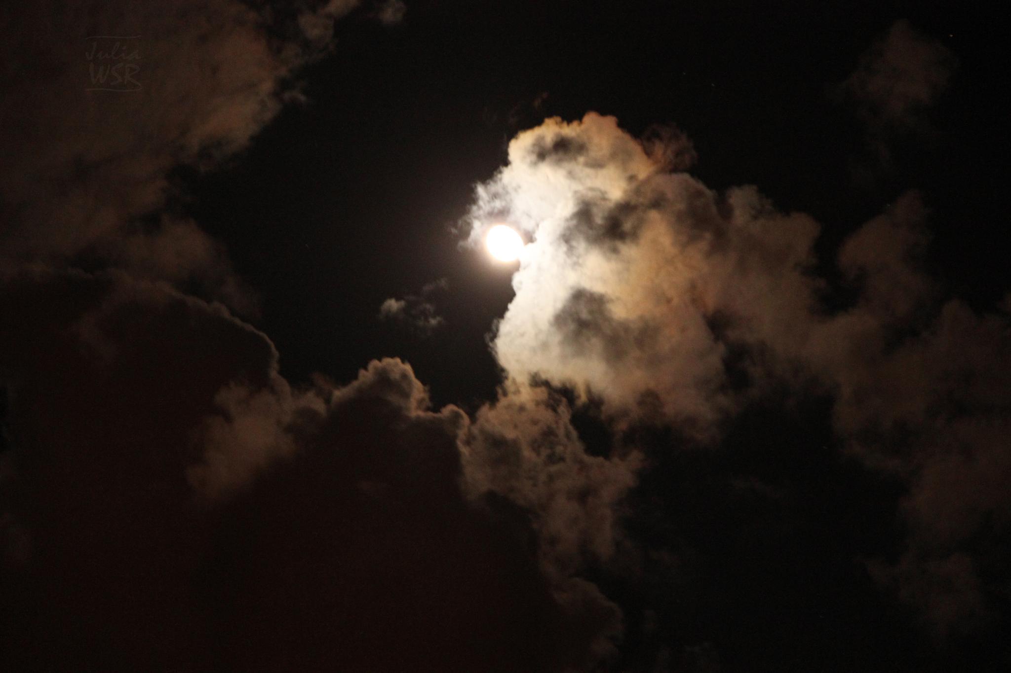 Luz da Lua by JuliaWSR