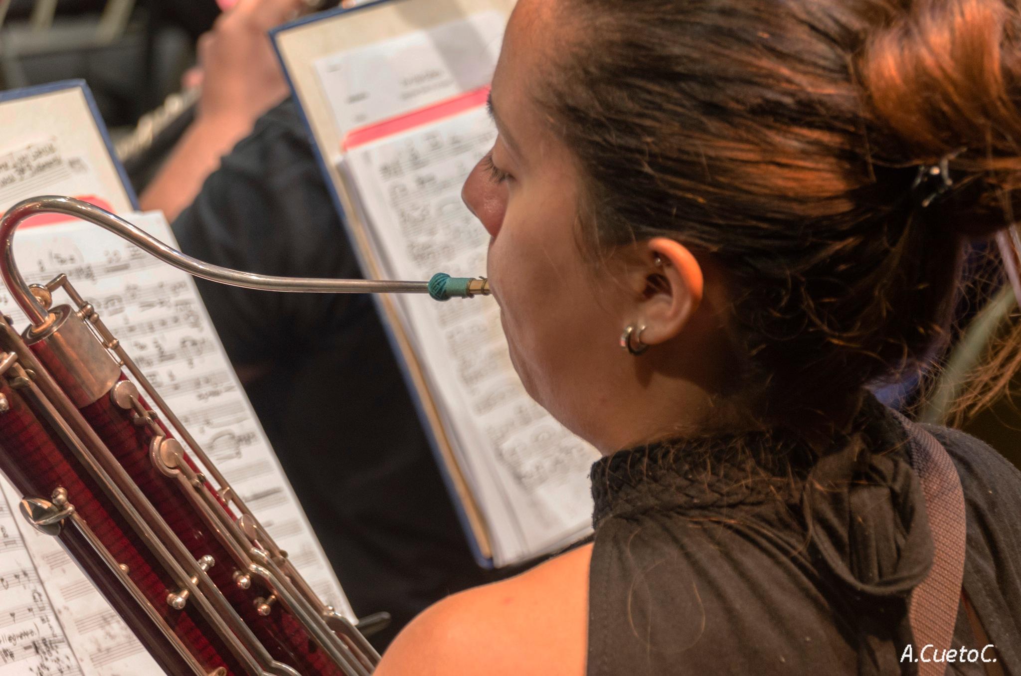 La fagotista by amarilis.cuetocabrera