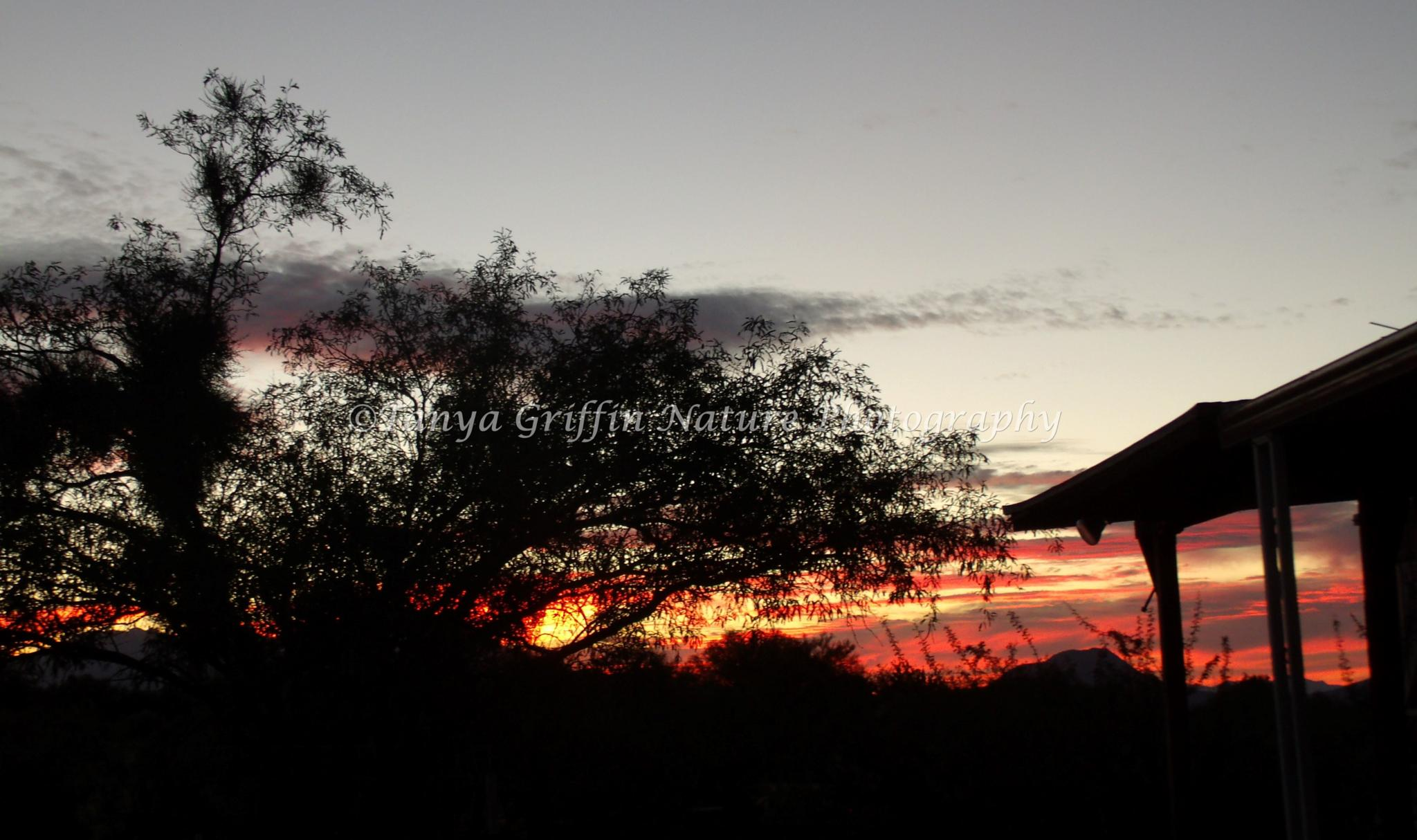 Rustic Arizona Sunset by tanya.griffin.737