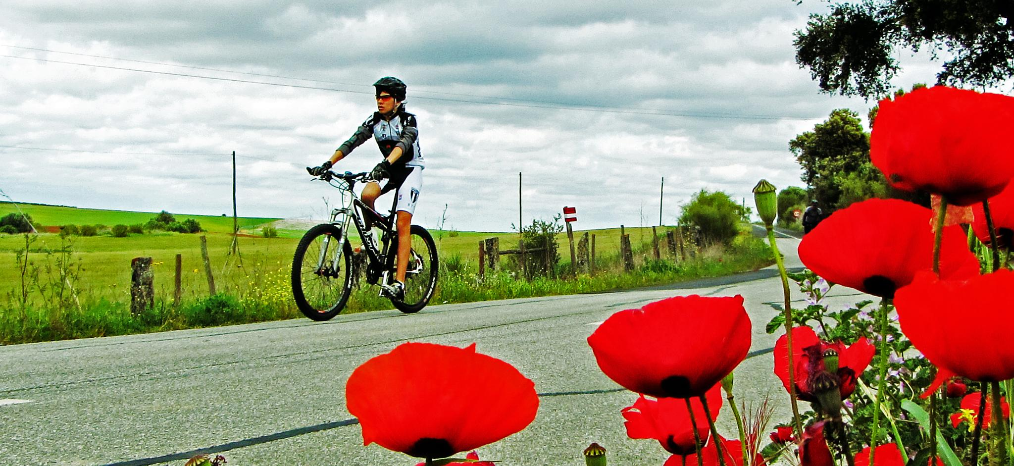 The cyclist by antoniojppereira