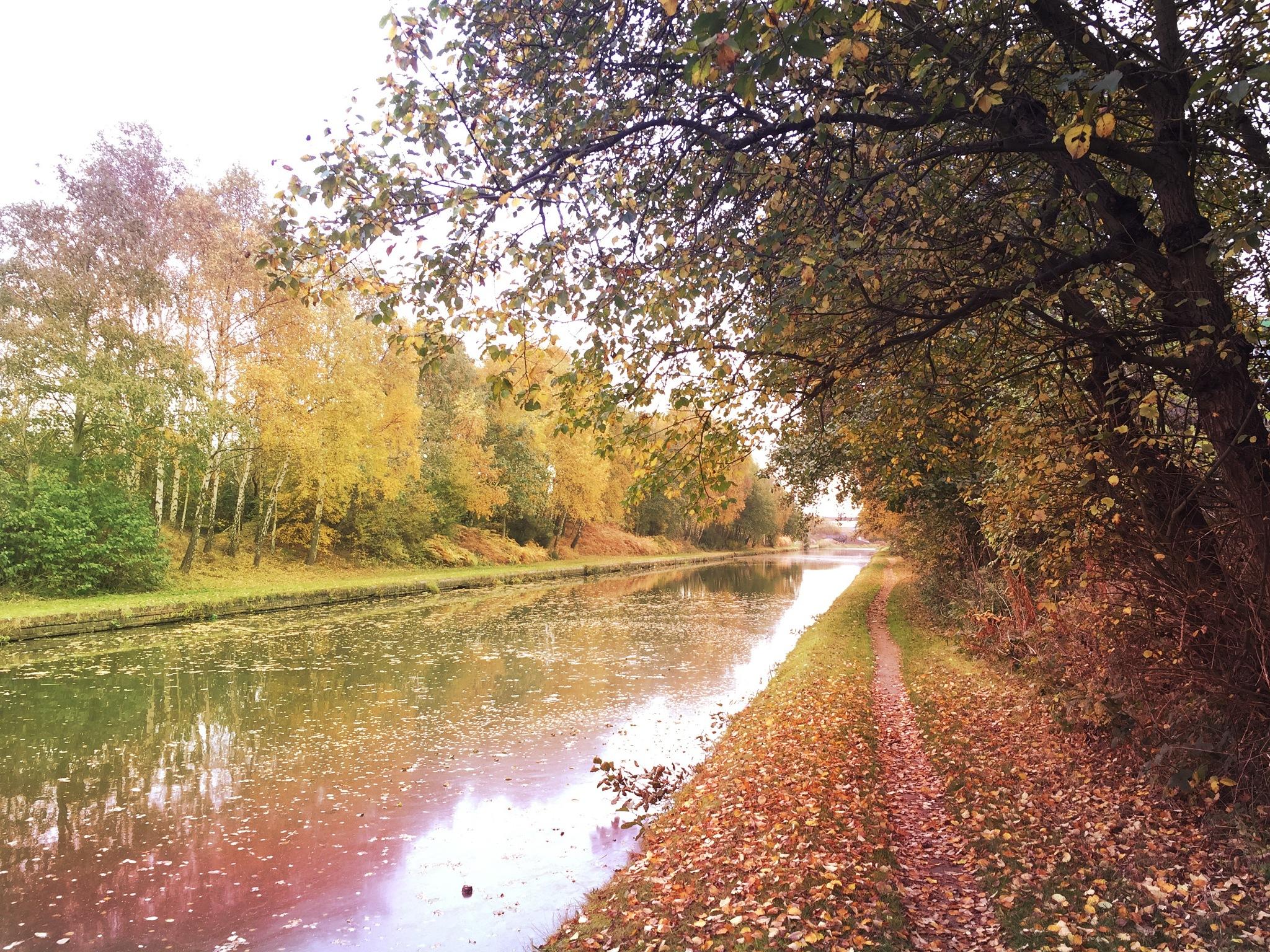 Autumn full steam ahead by Darren Juden Gardner