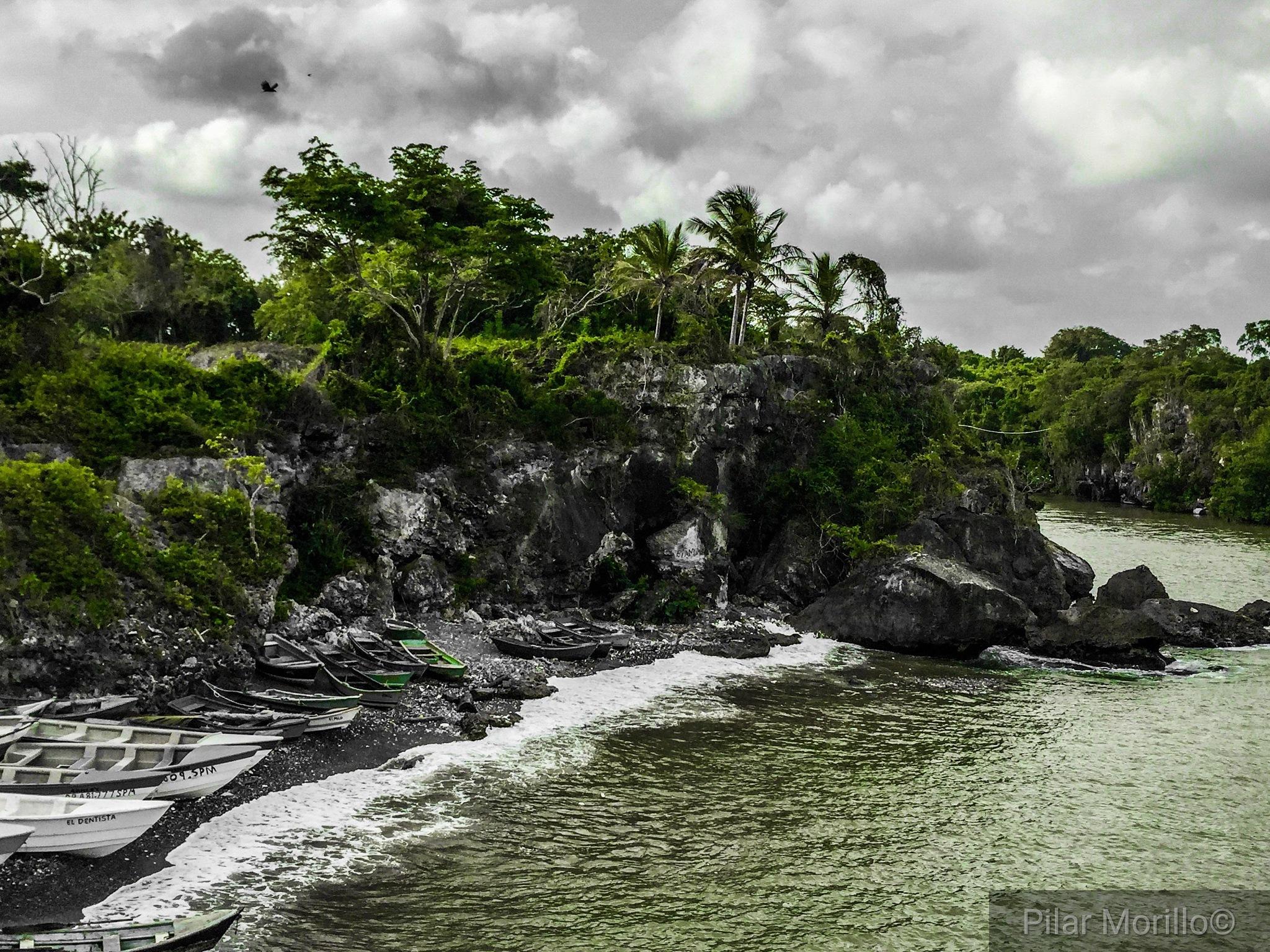 green sea by Pilar Morillo