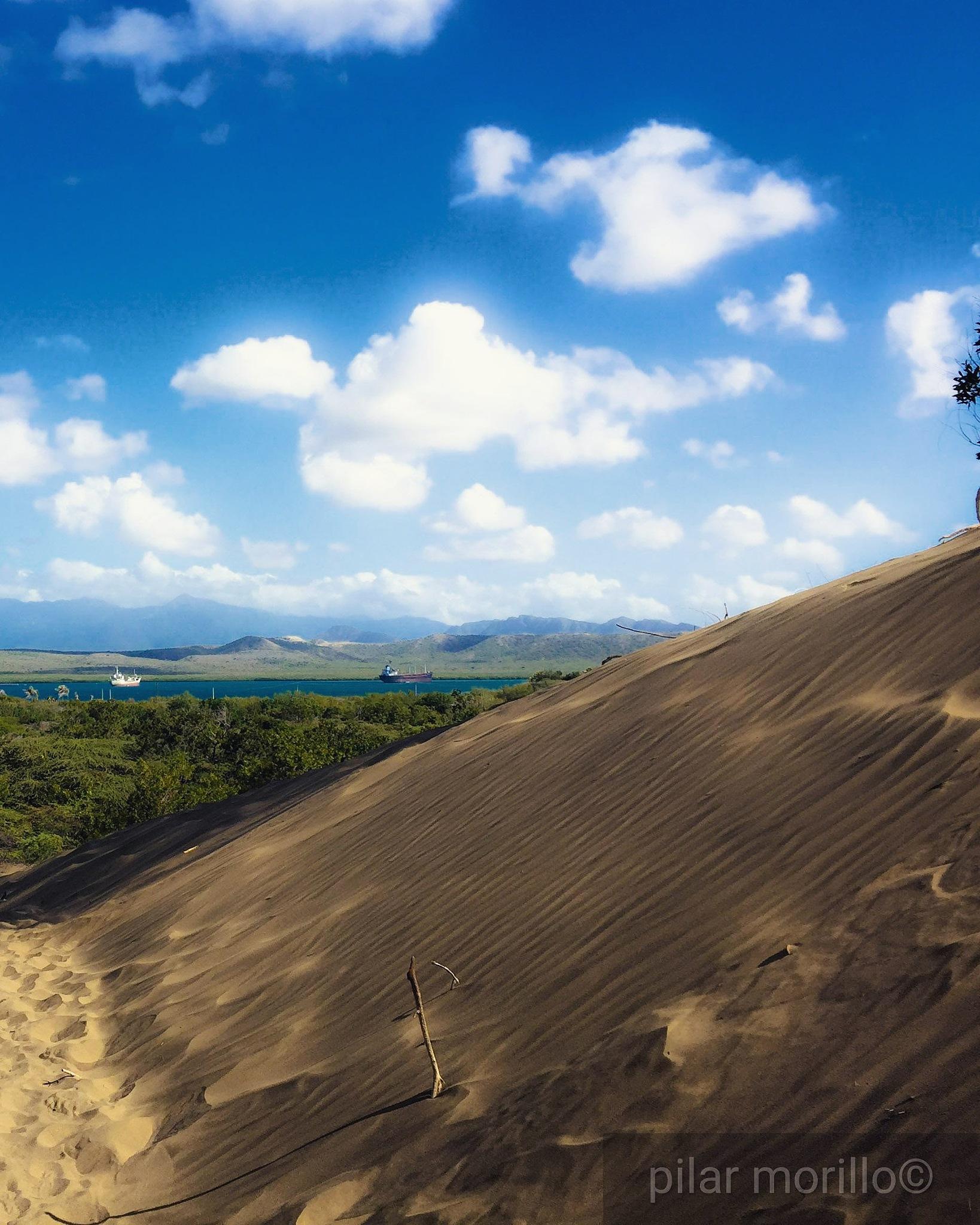 dunes by Pilar Morillo