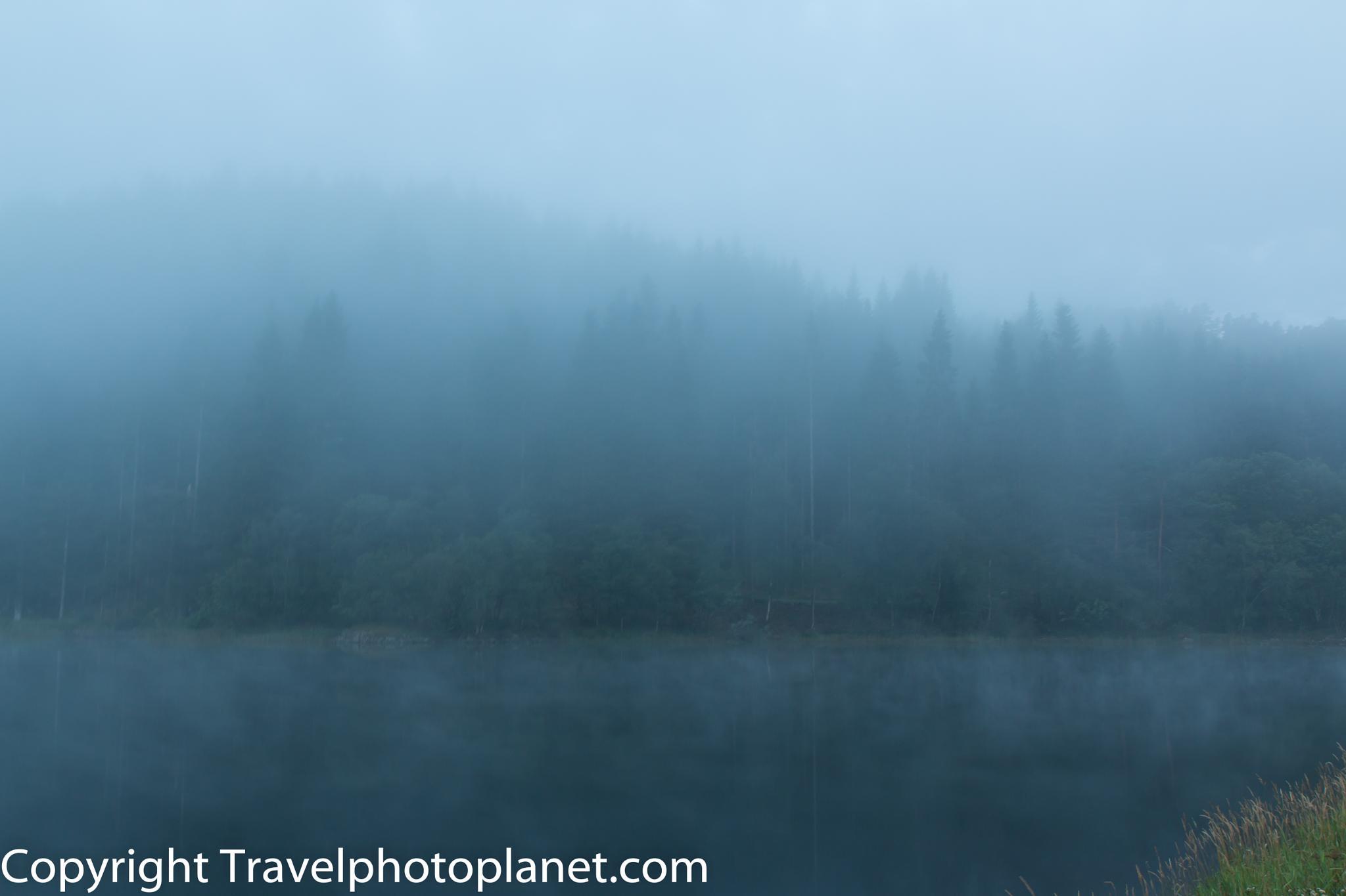 Photo in Nature #lake #mist #fog #forest #nature #gaupåsvatnet #bergen #norway