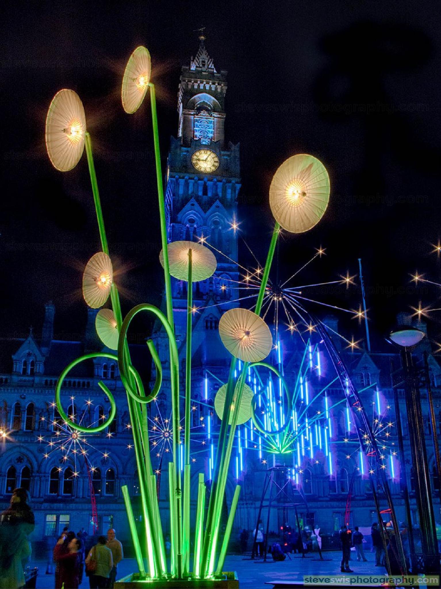 Bradford Light Garden by Steve Swis