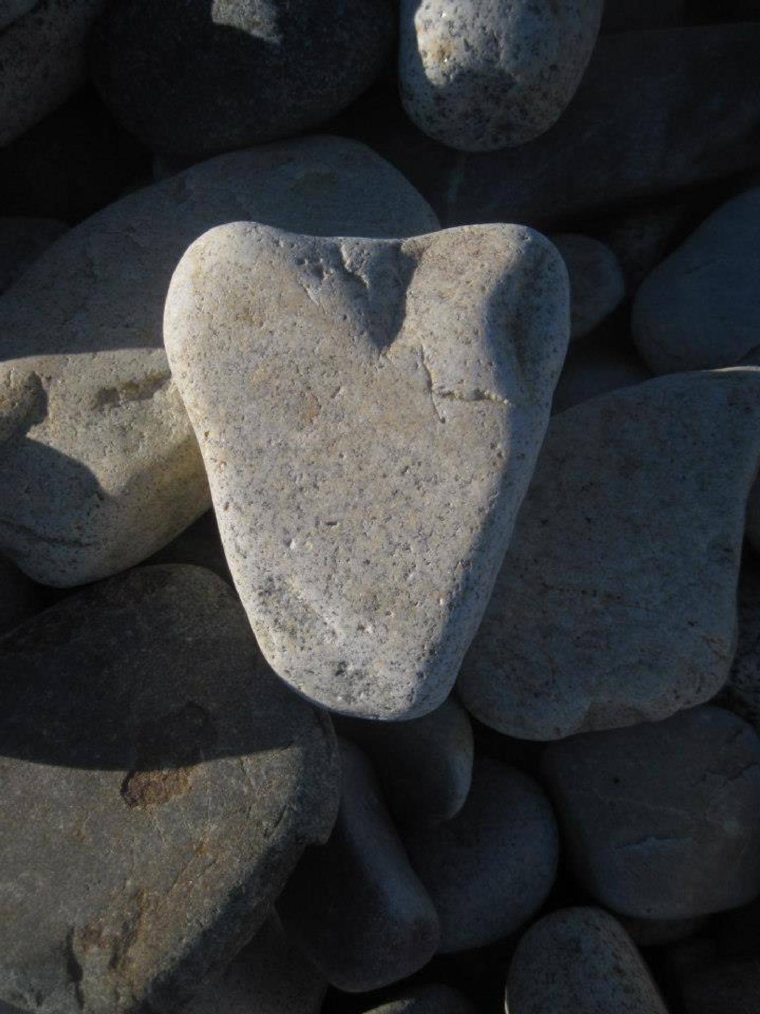 Heart Rock by Felicity Adams