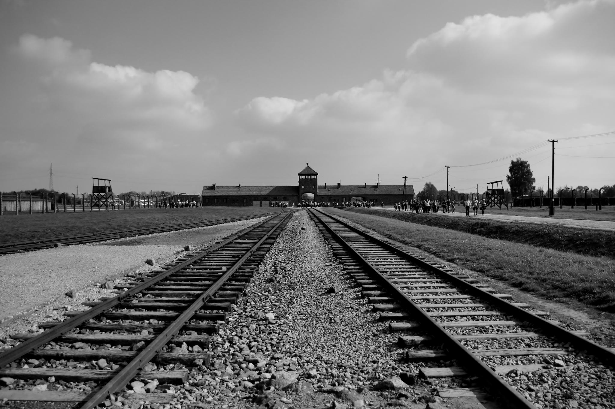 Birkenau  Very Powerful !! by Neil Bartlett