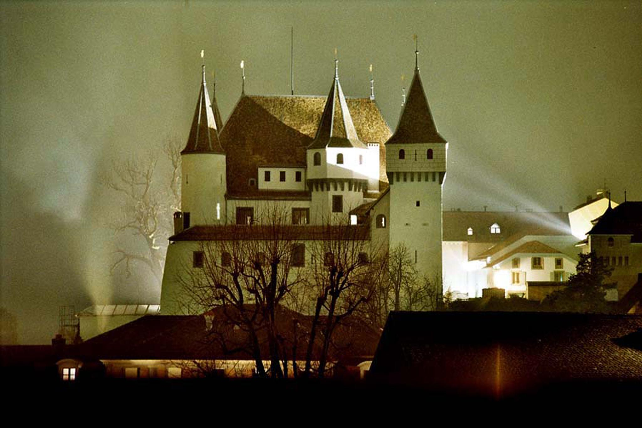 Nyon castle in the night and frog by Phif60