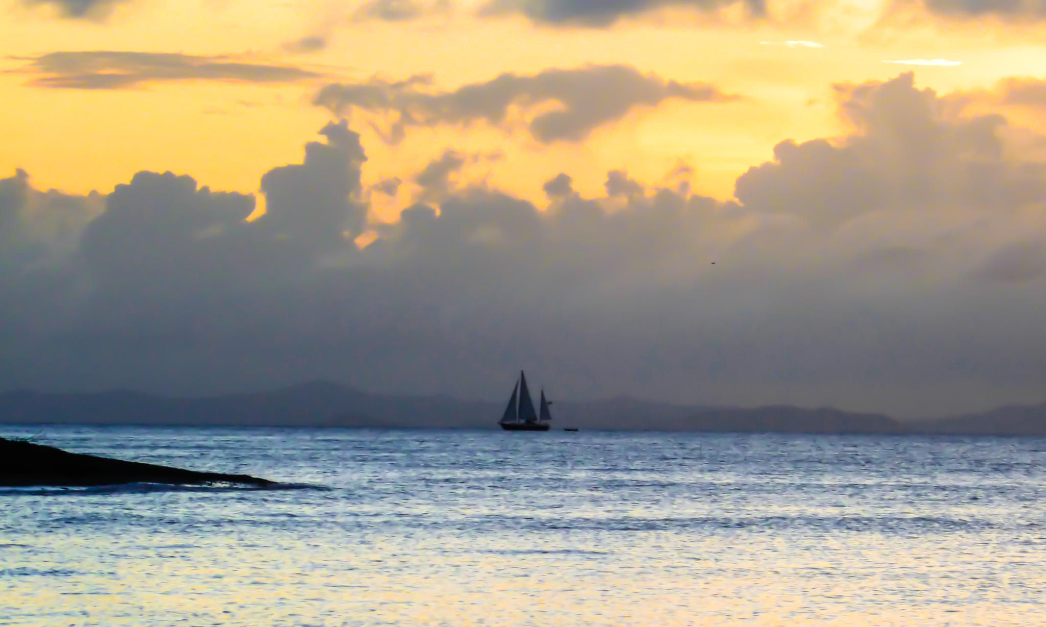 Sailboat by Cait Templeton