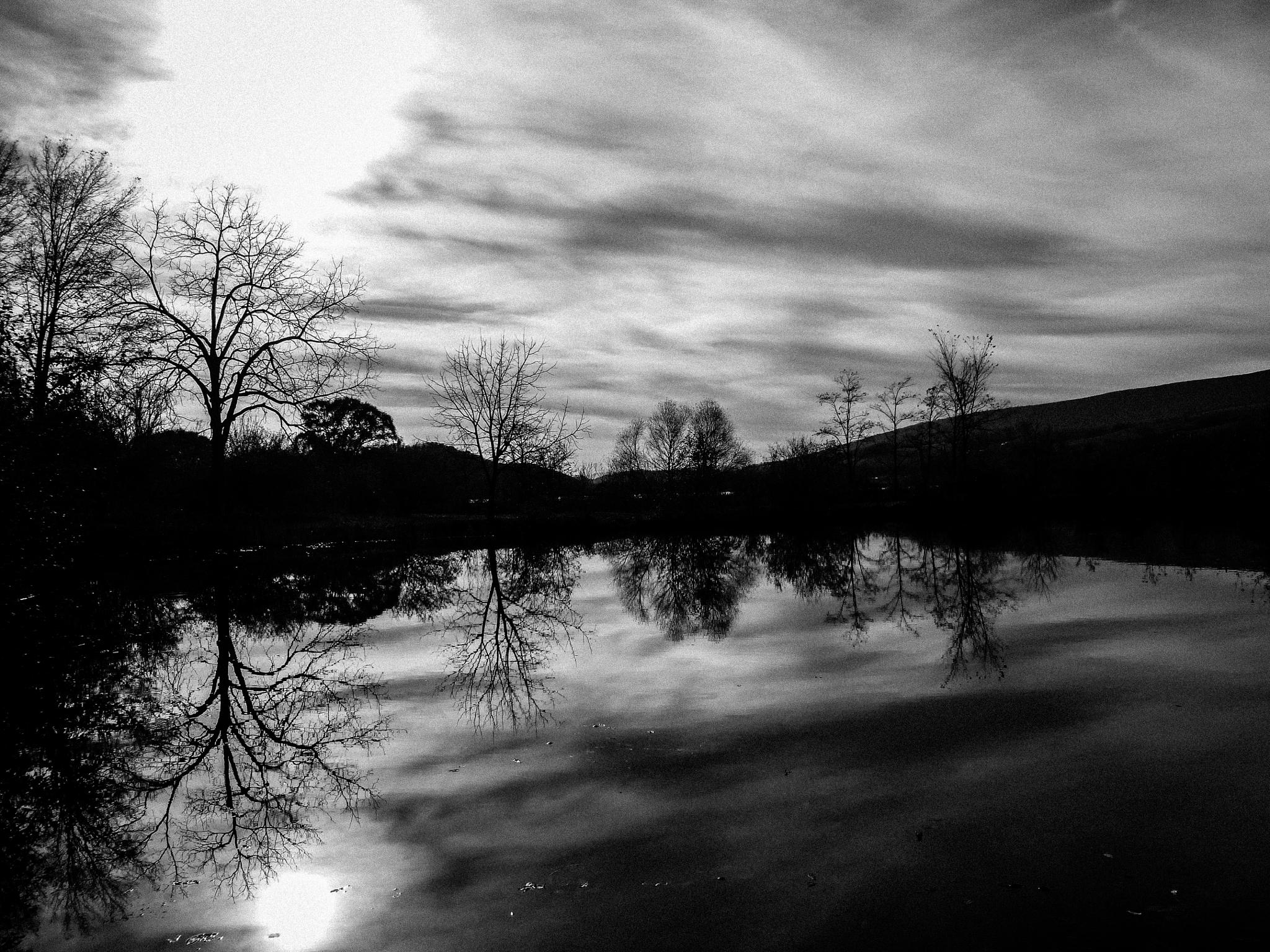 Black and White Reflection by Cait Templeton