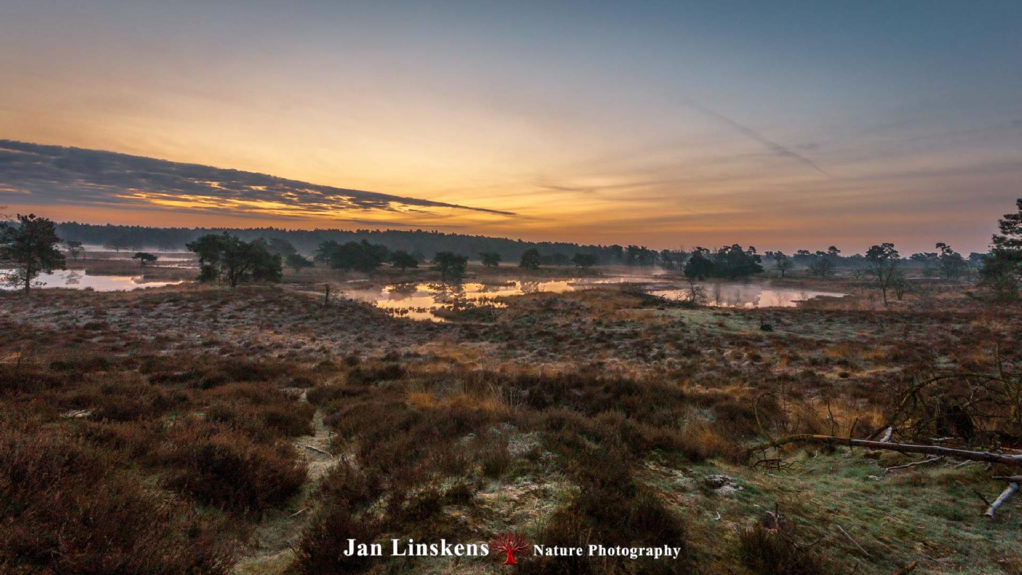 Good Morning by jan.linskens.18