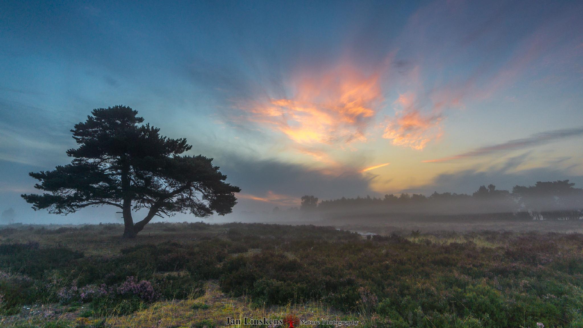 sunrise by jan.linskens.18