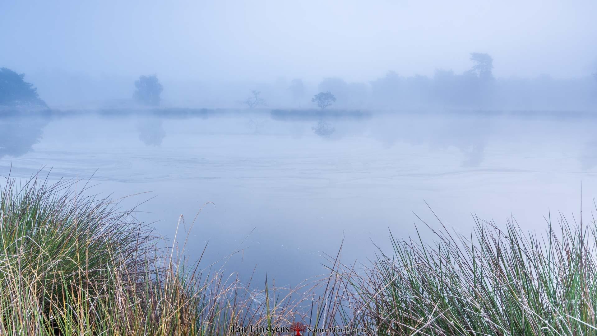 Fog by jan.linskens.18