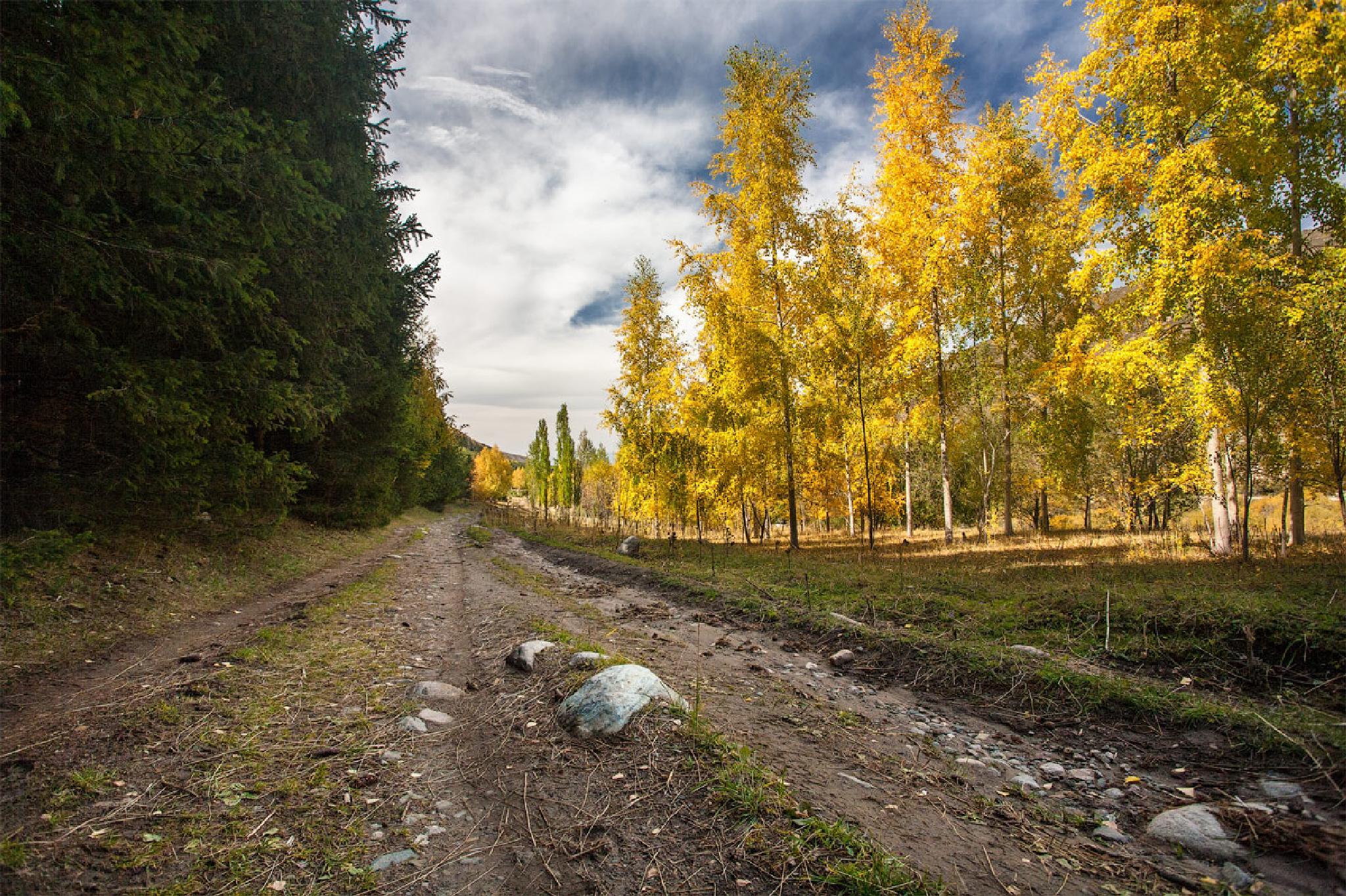 Photo in Landscape #karakol #kyrgyzstan