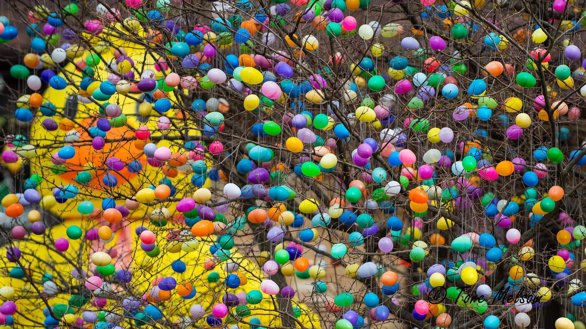 Photo in Random #easter egg #easter