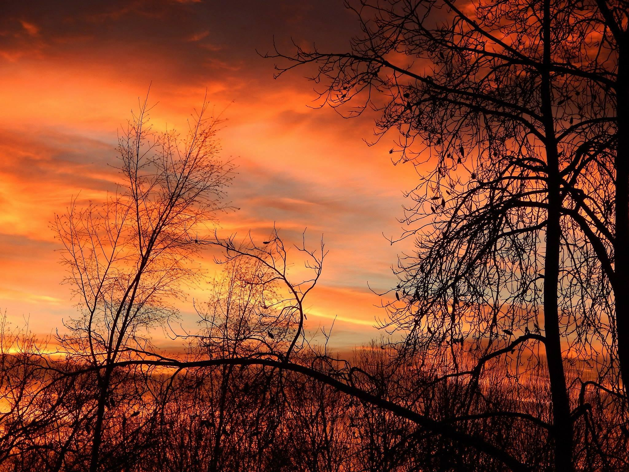 Photo in Landscape #sunrise sun up day break