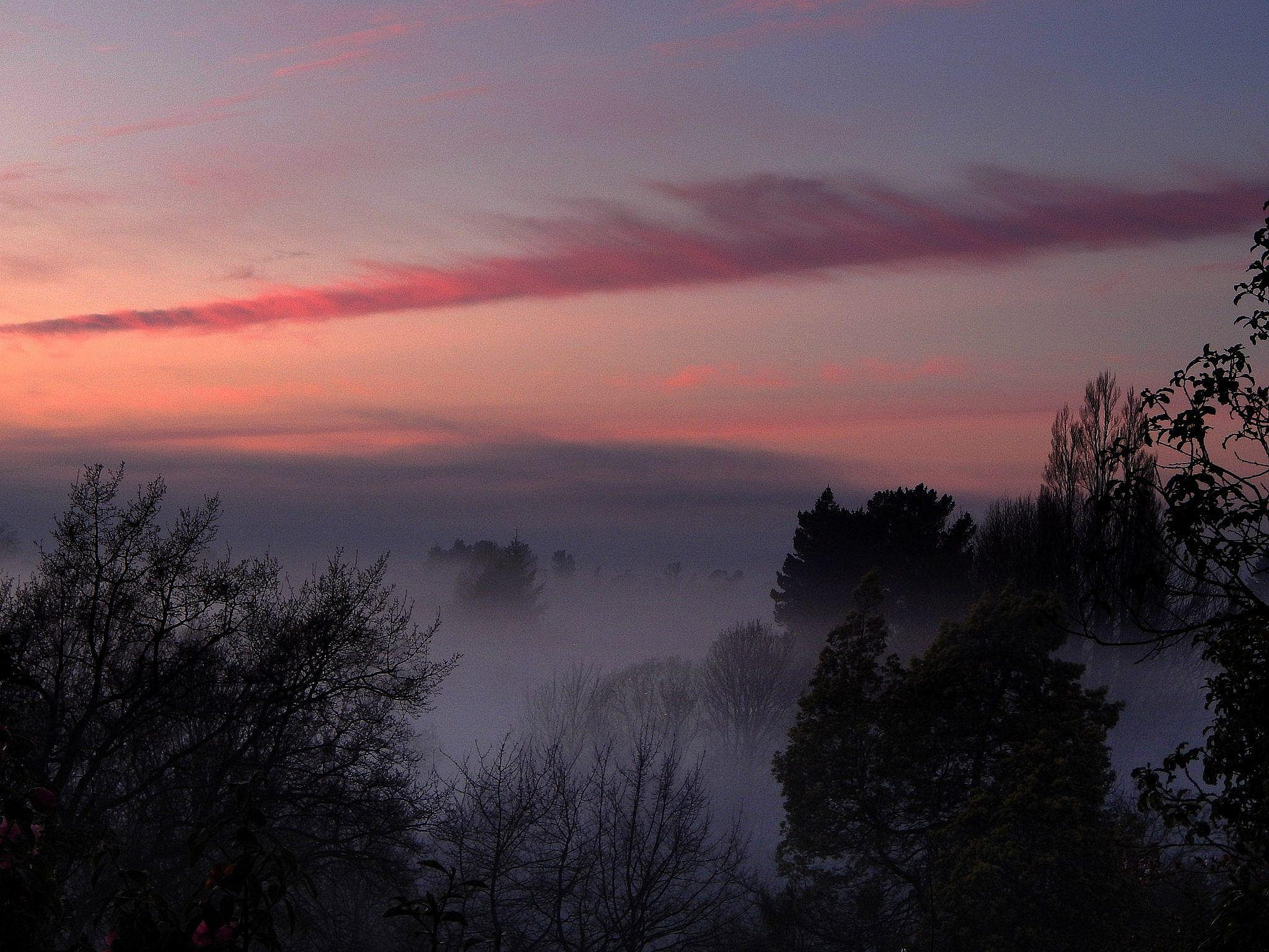 Misty Morning by LindaFenton