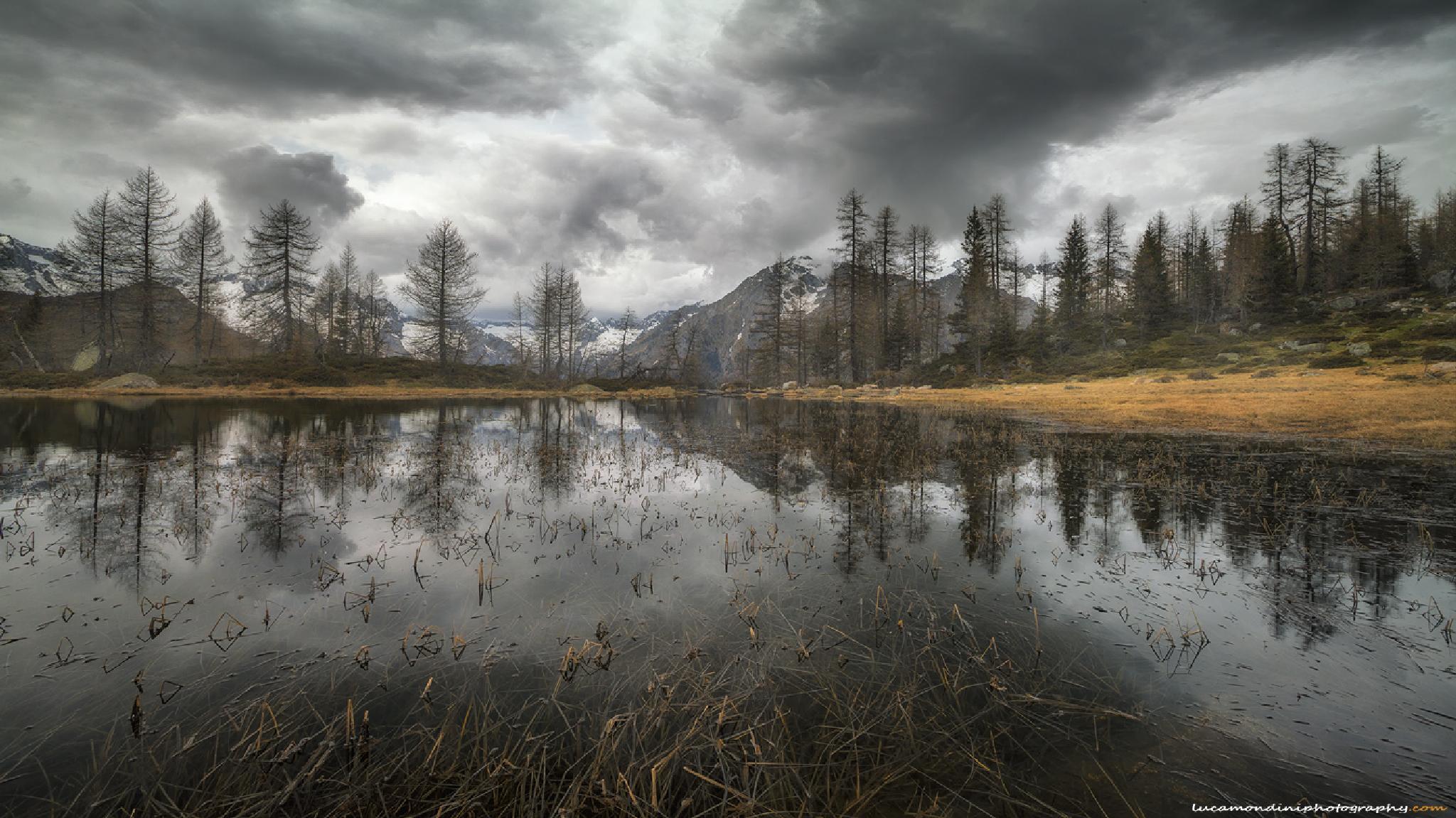 Misty landscape by lucamondini