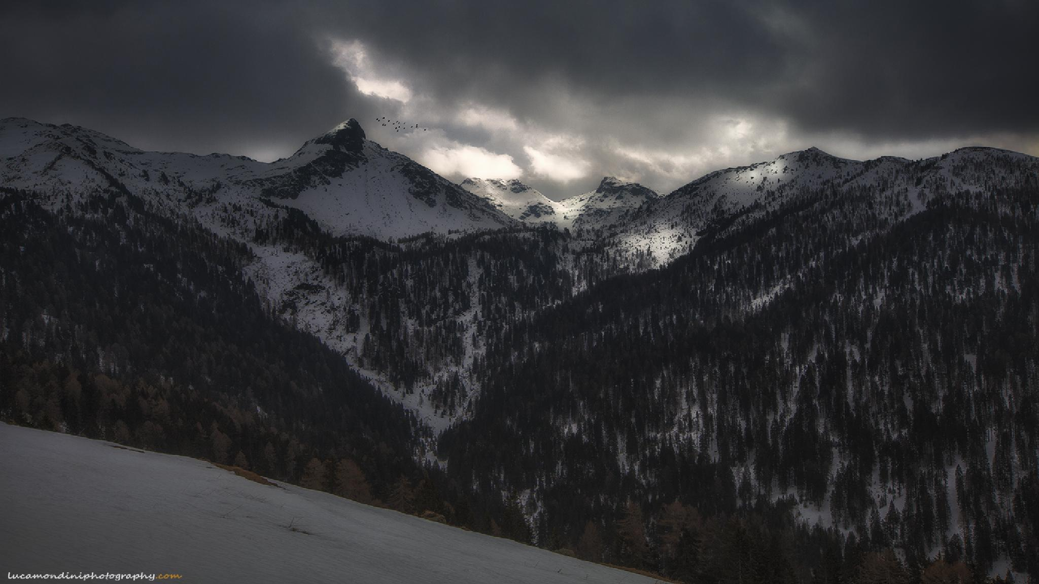 Storm is coming by lucamondini