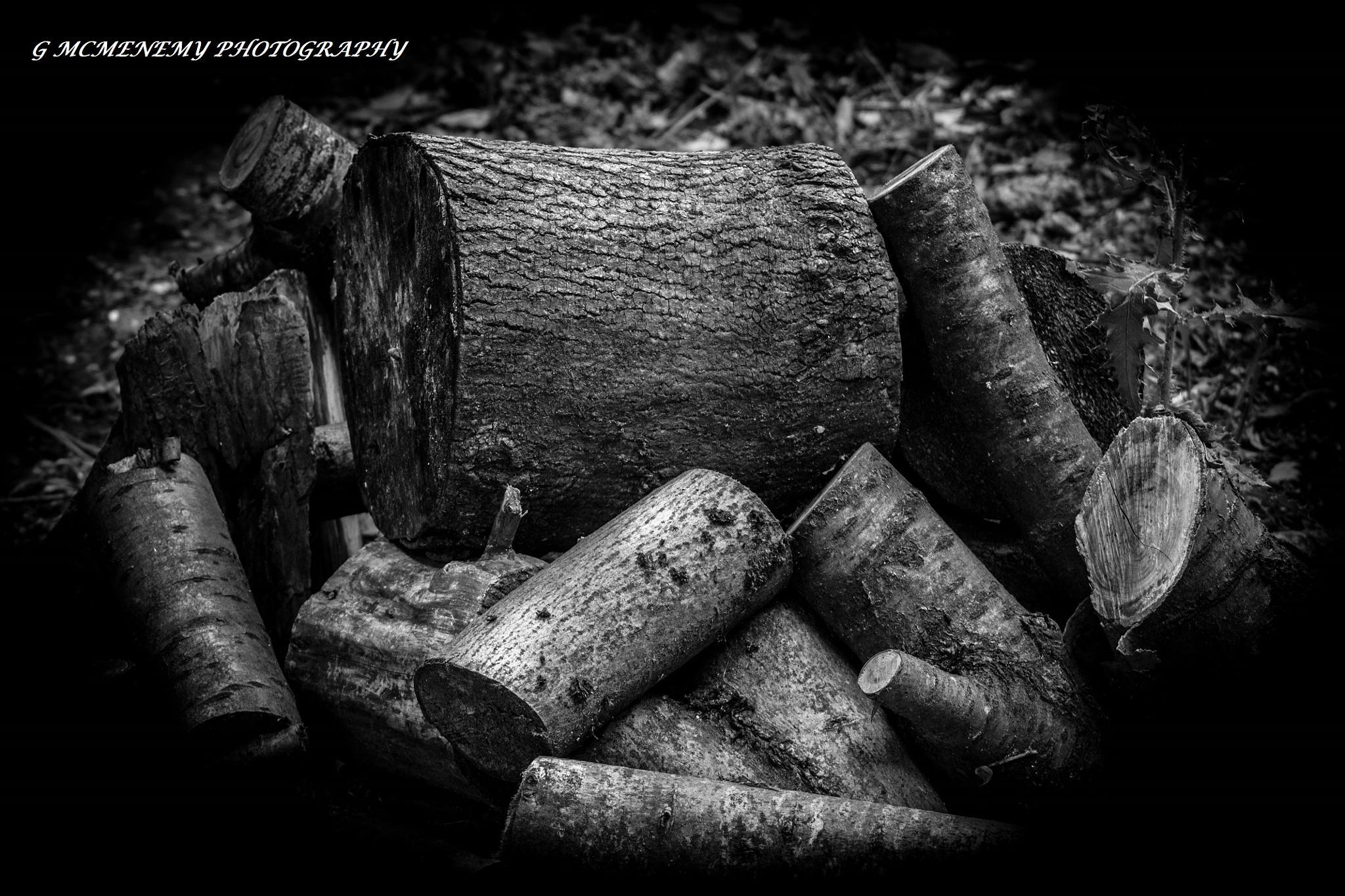 Log Pile by george.mcmenemy.7