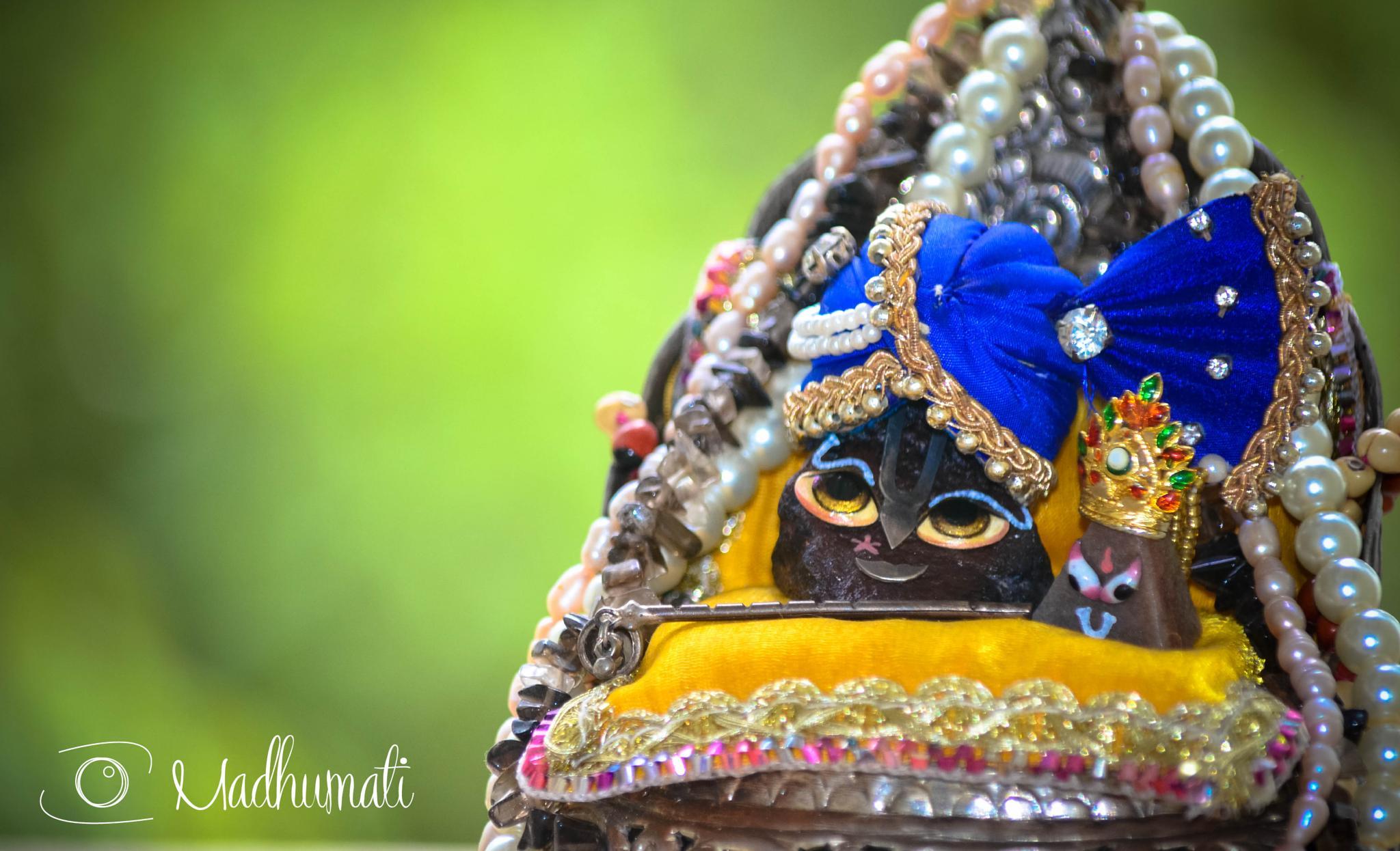 Govardhana by madhumati