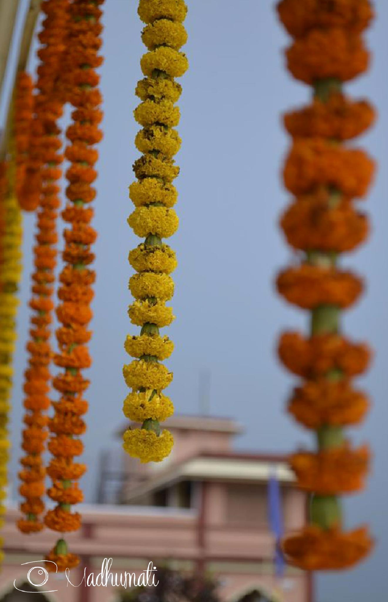 Mayapur | Índia by madhumati