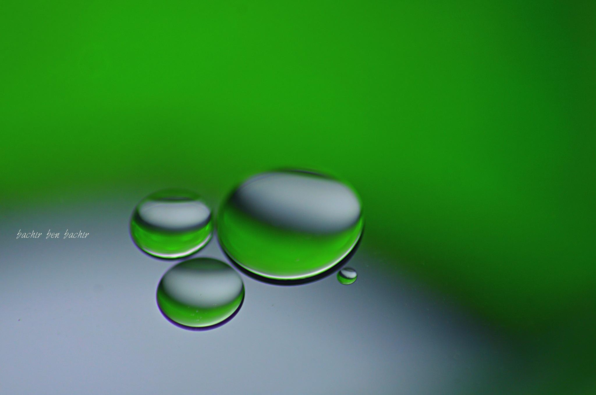 Oil drops by bachir.benbachir.5