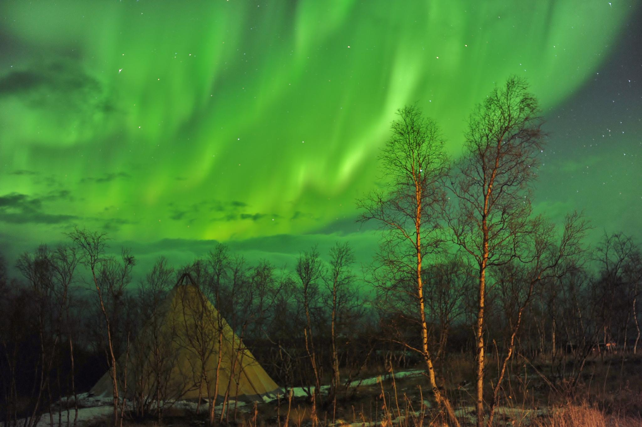 Photo in Random #aurora #northern lights #sweden #abisko