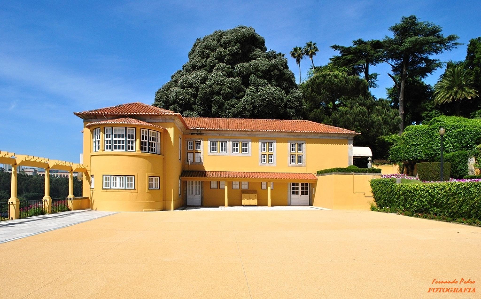 Roseiral House by FernandoPedro