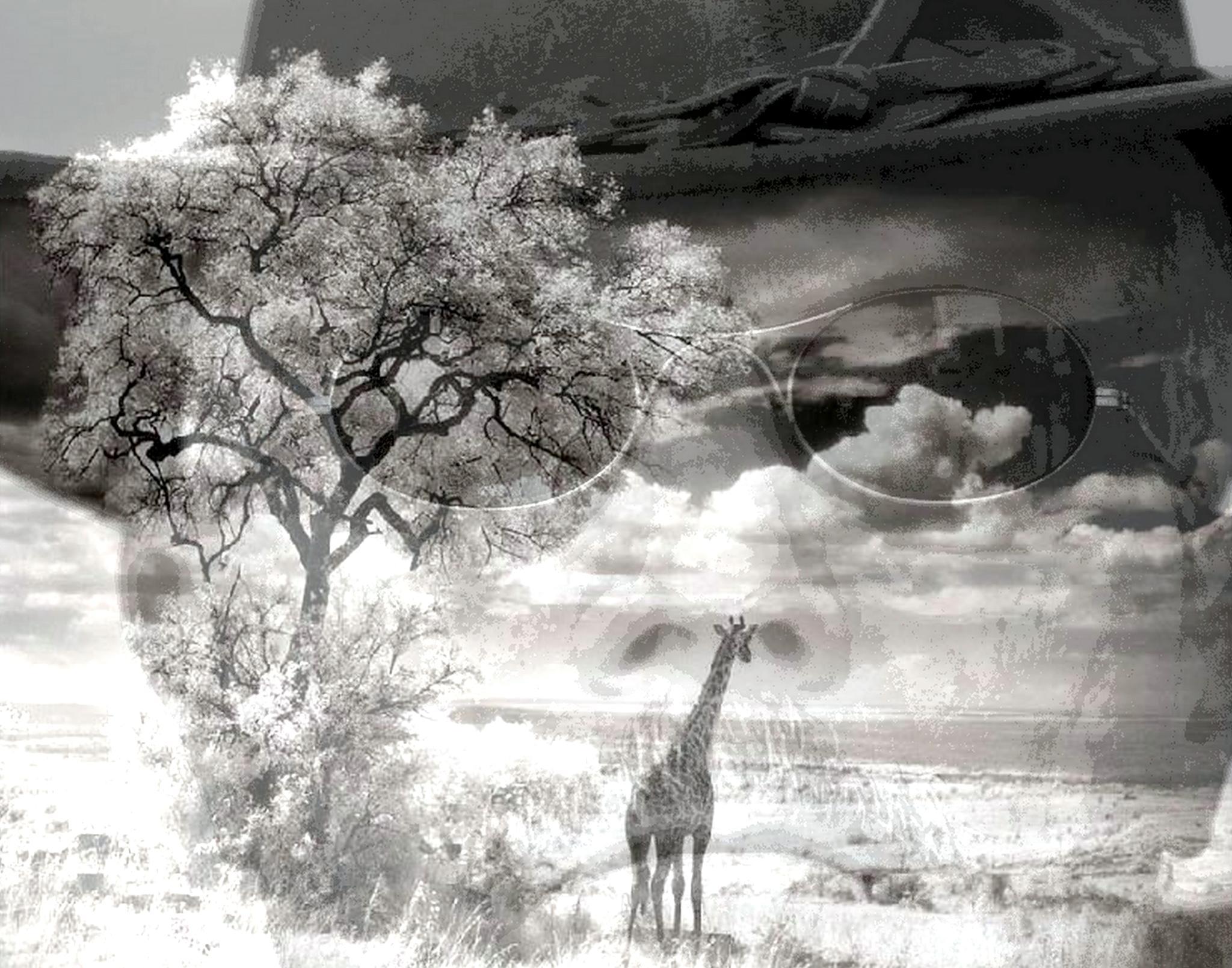 Africa by mpross1