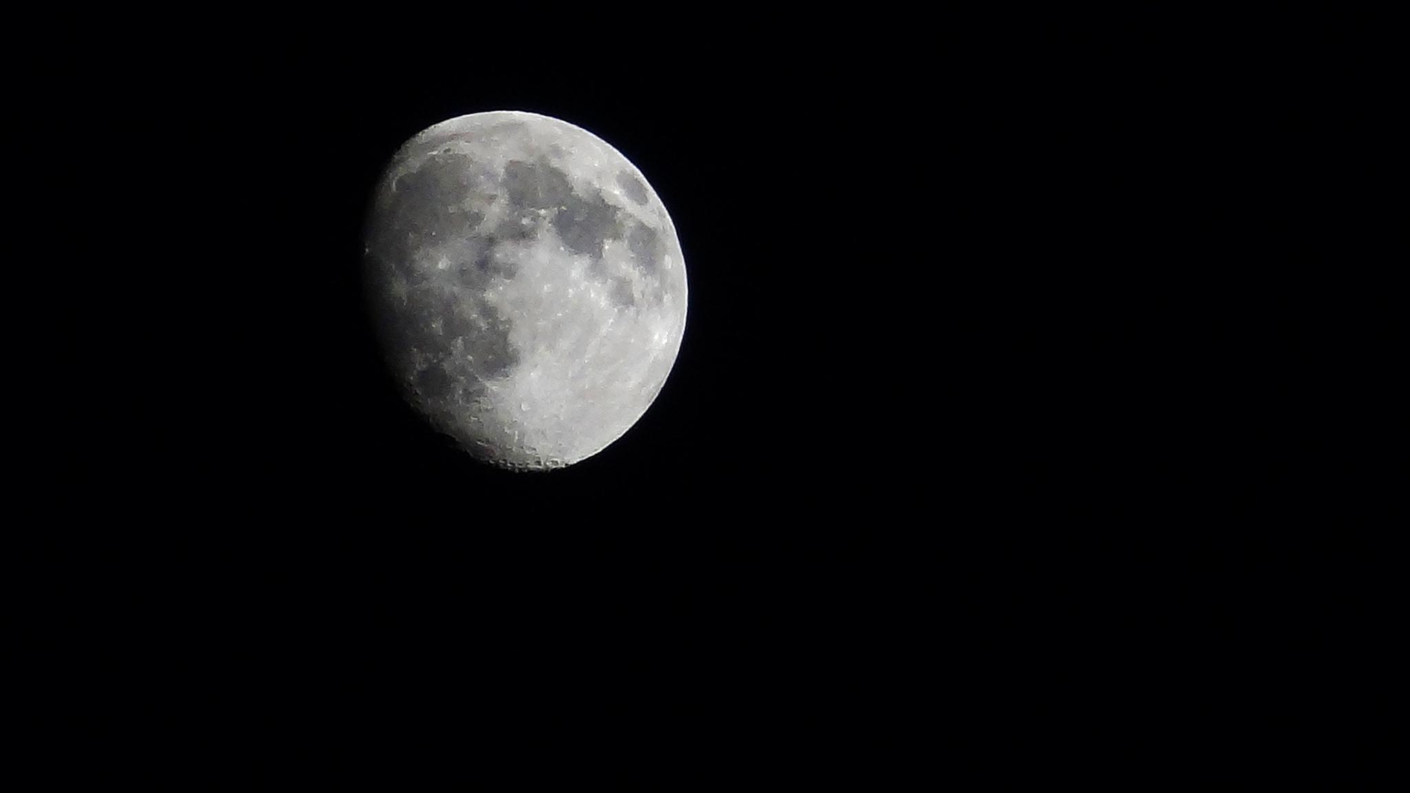 Photo in Landscape #moon #sky
