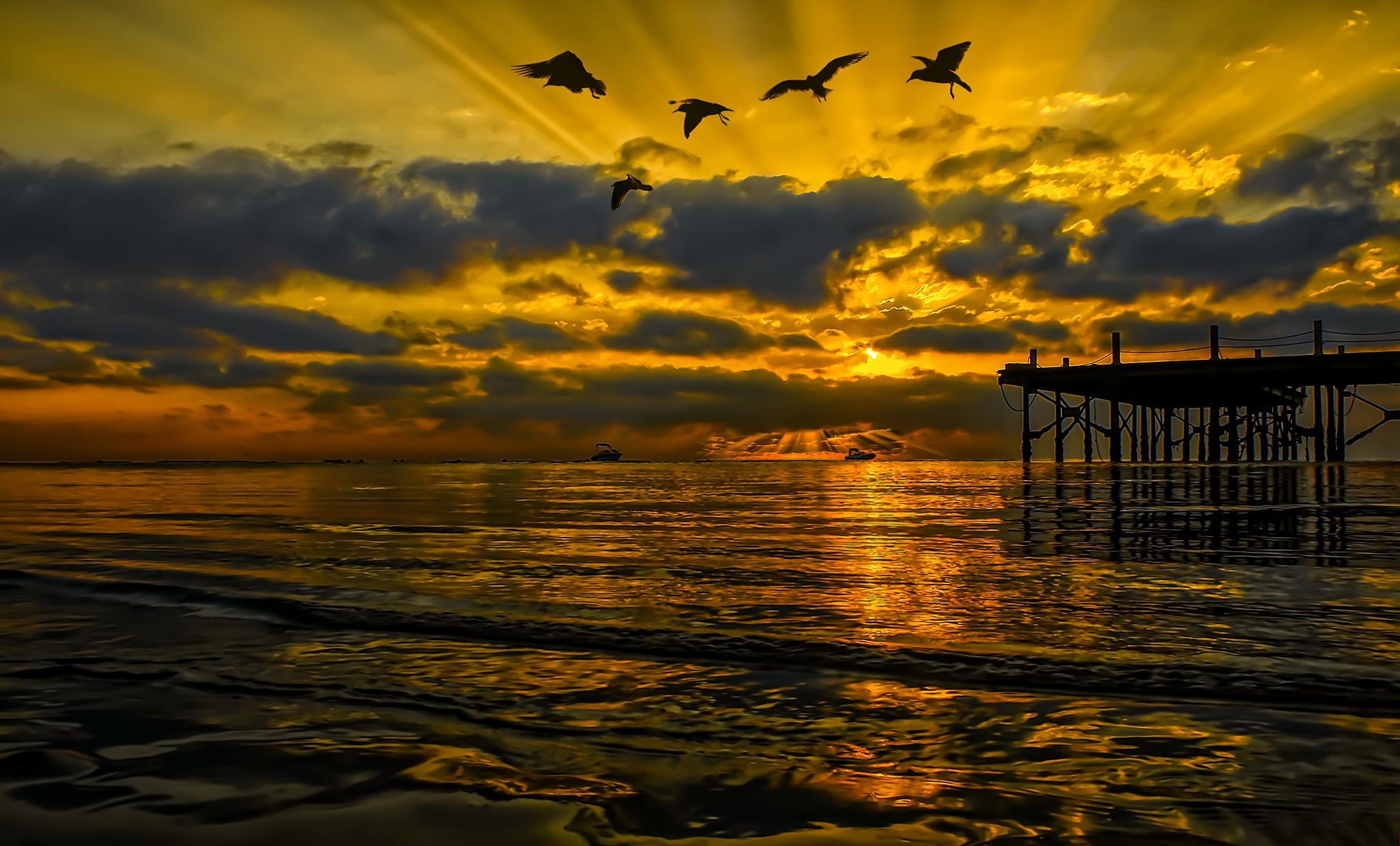 Photo in Landscape #red sea #pier #sunrise #artistic #silhouette #seascape