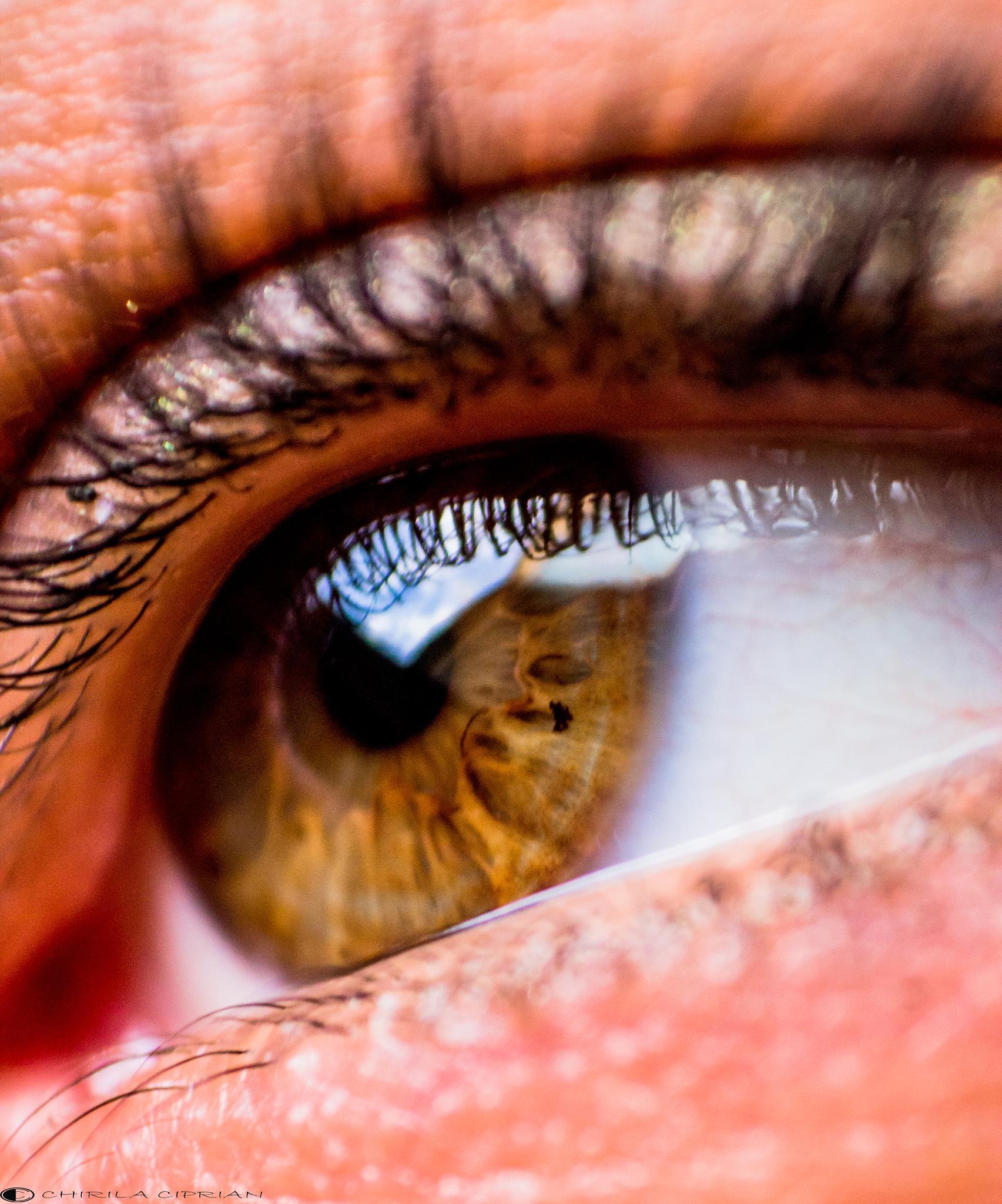 eye  by Chirila Ciprian