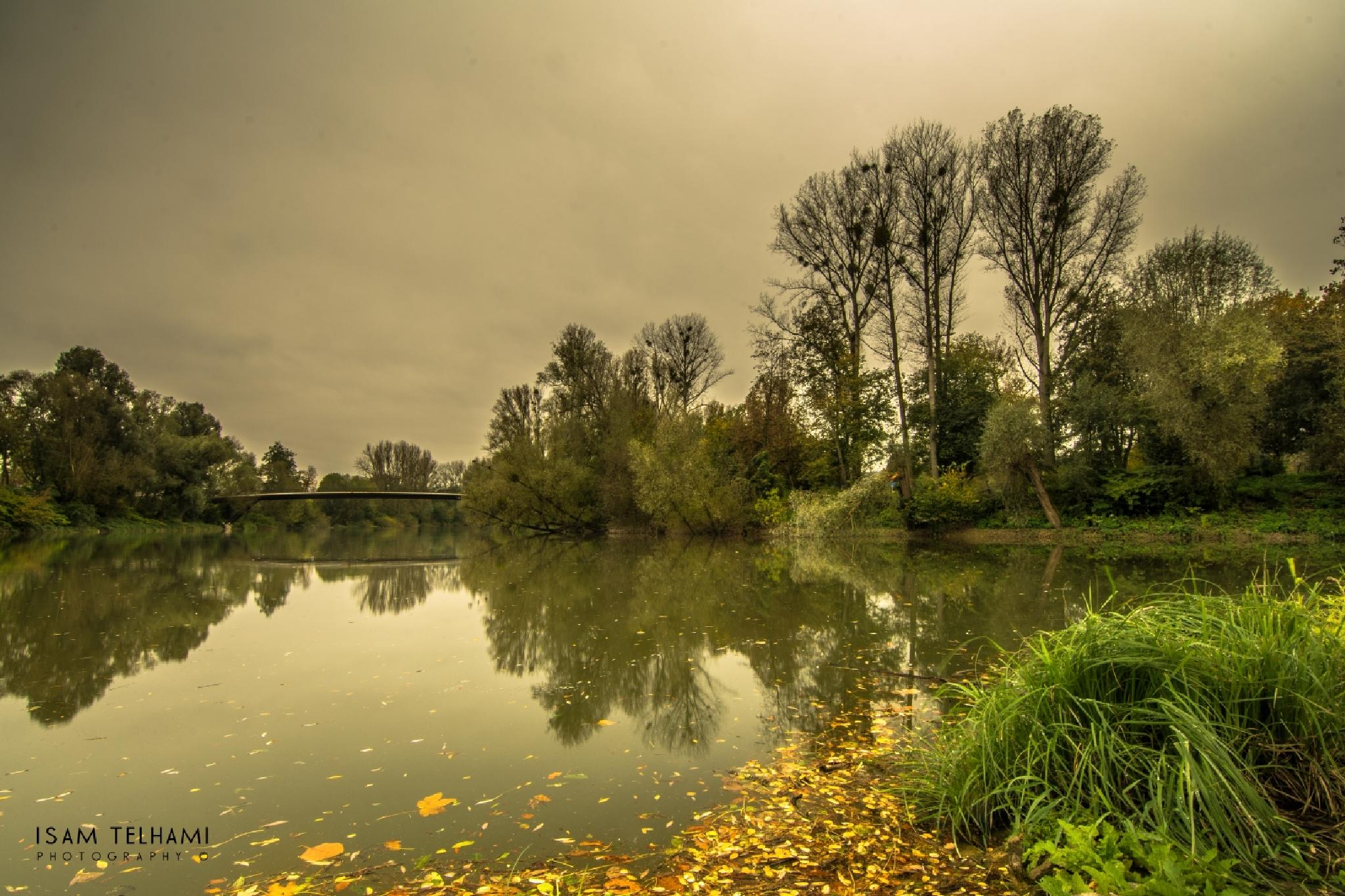 Photo in Landscape #autumn #river #water #germany