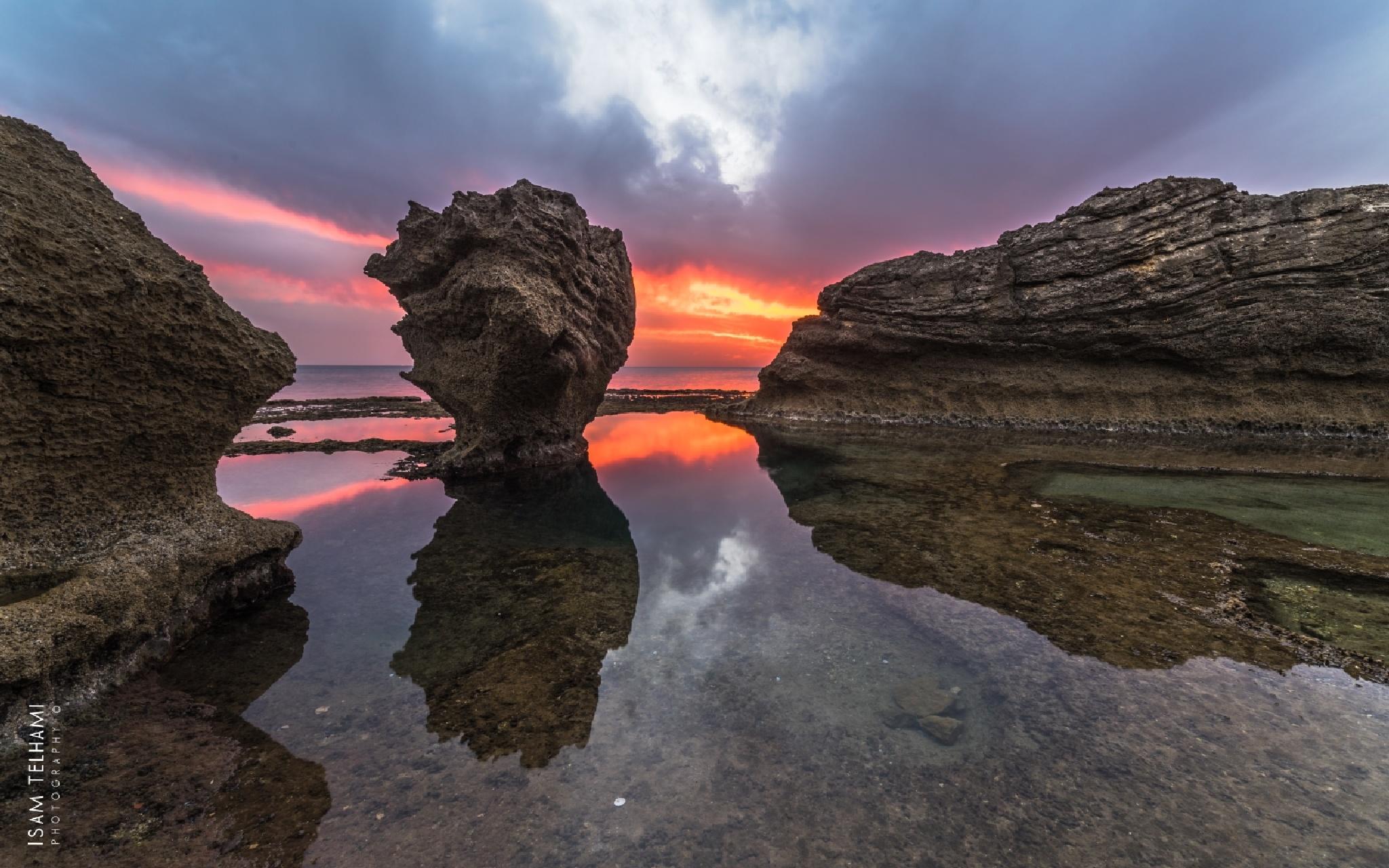 Magic Nature  by IsamTelhami