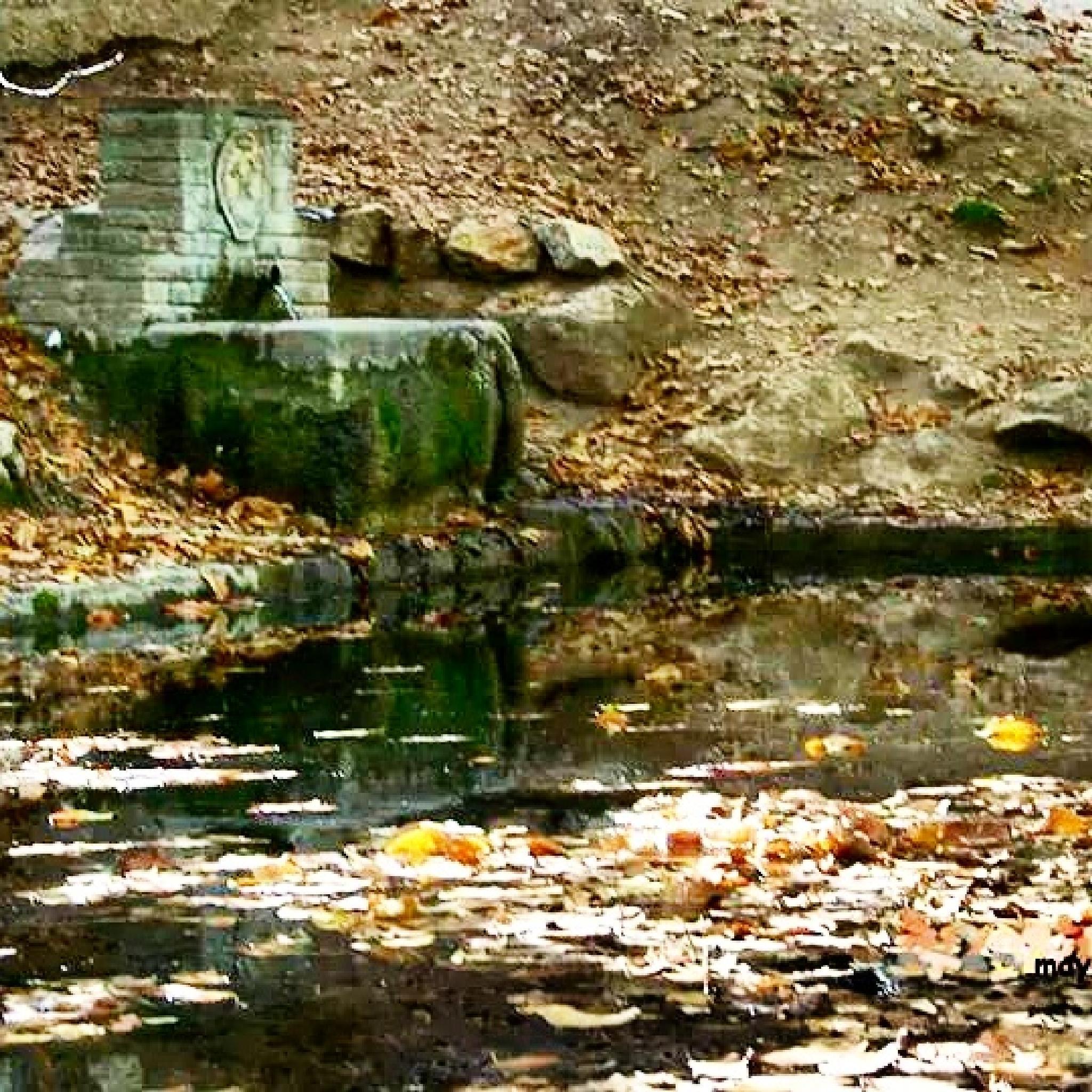 El estanque. by maydo.lopez