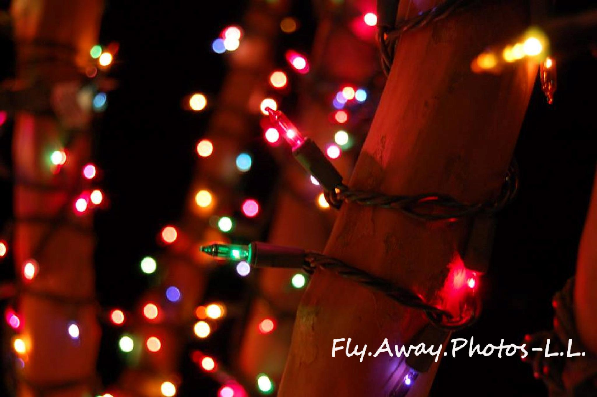 Christmas Night Lights by Leah Lisee Photography