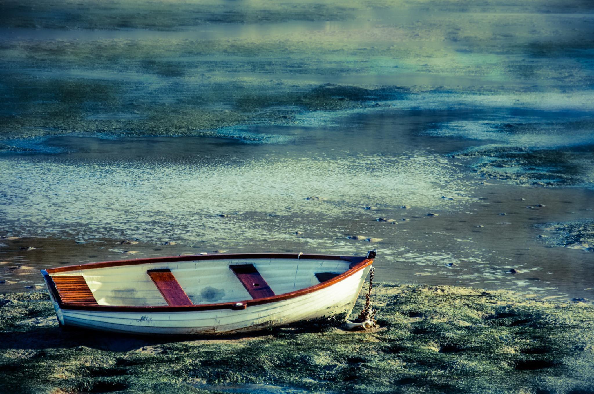 Photo in Random #boat #stranded