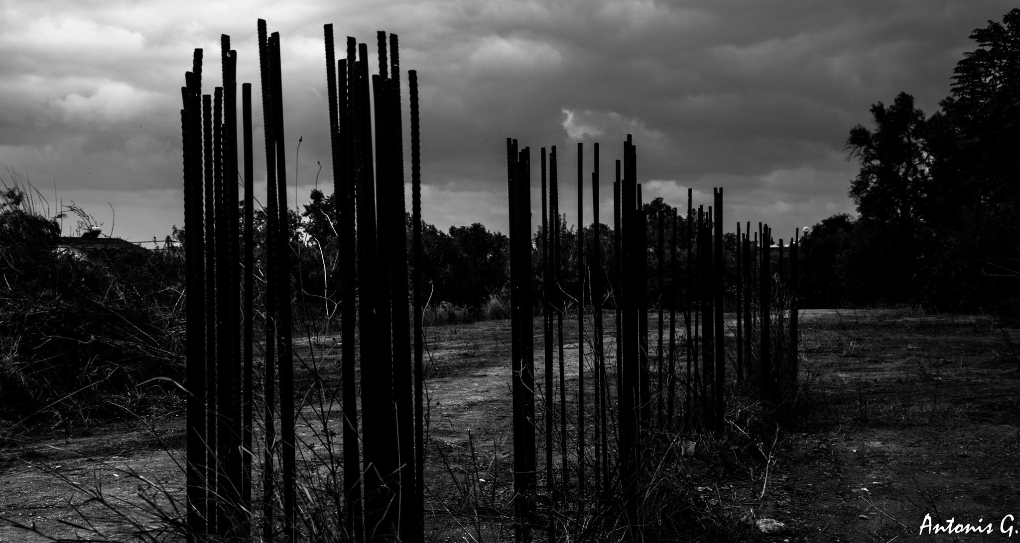 Untitled by Antonis Giakoumakis