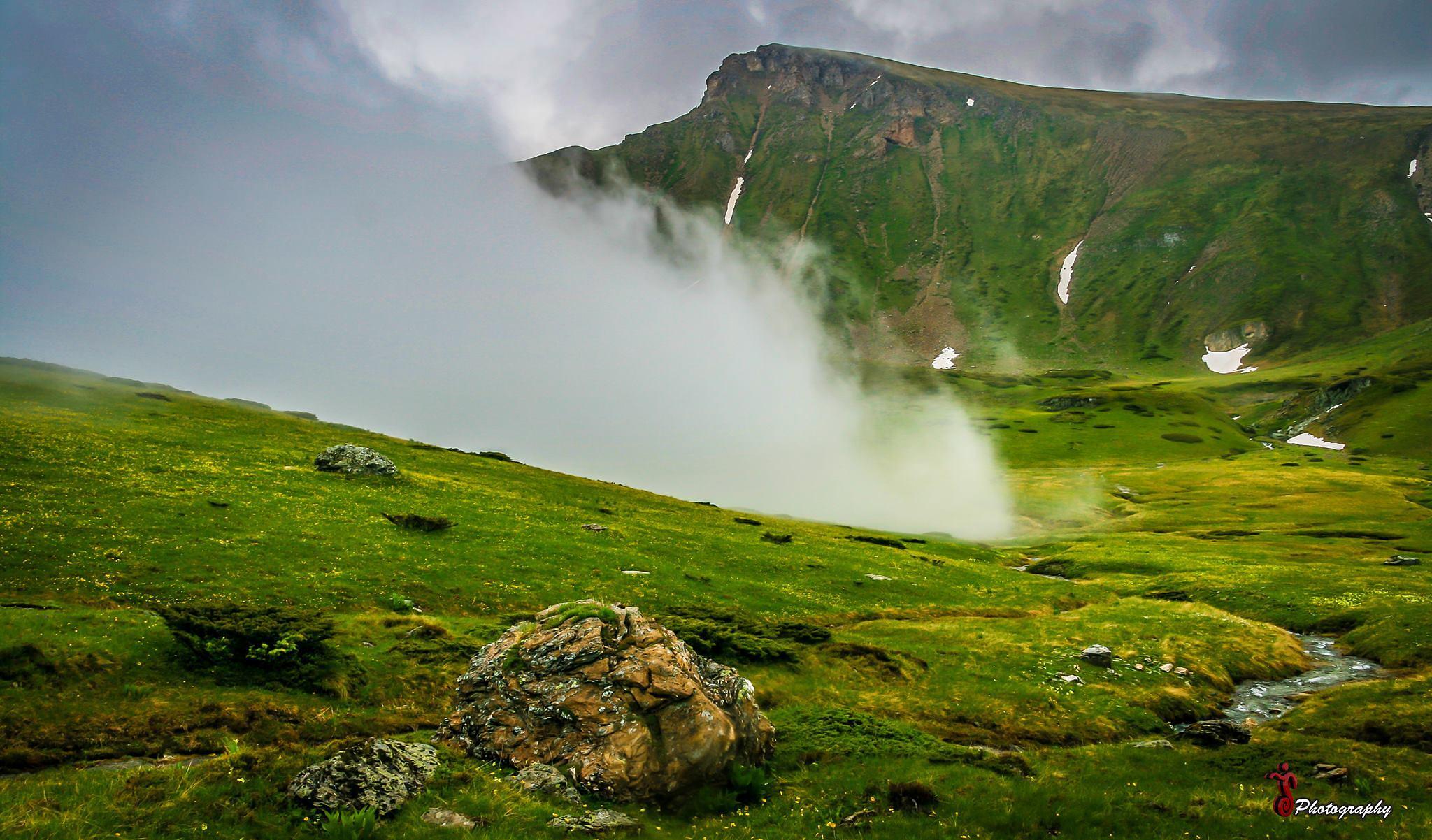 Photo in Landscape #mist #fog #nature #water #green #landscape