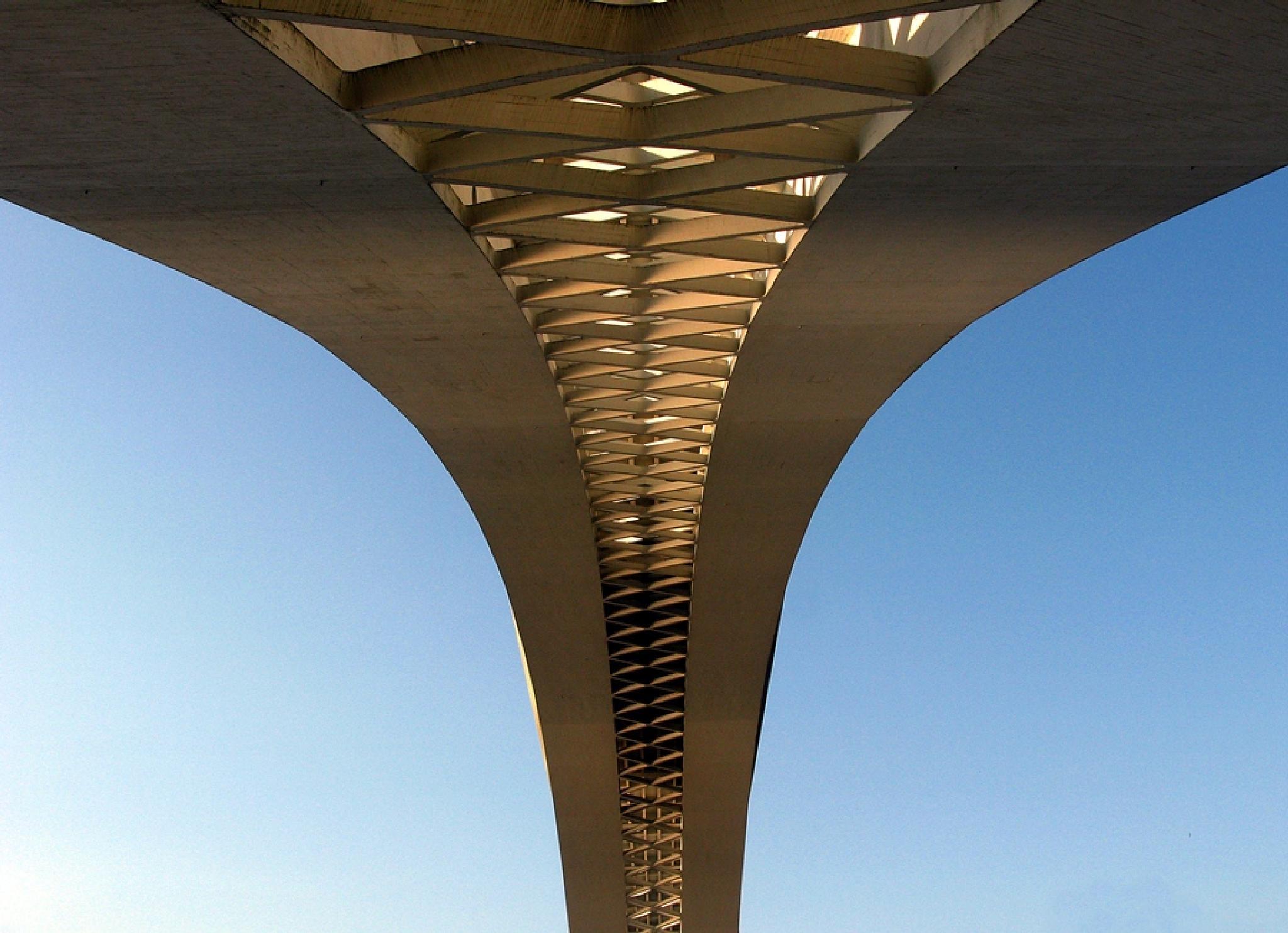 Photo in Architecture #bridge #river #architecture