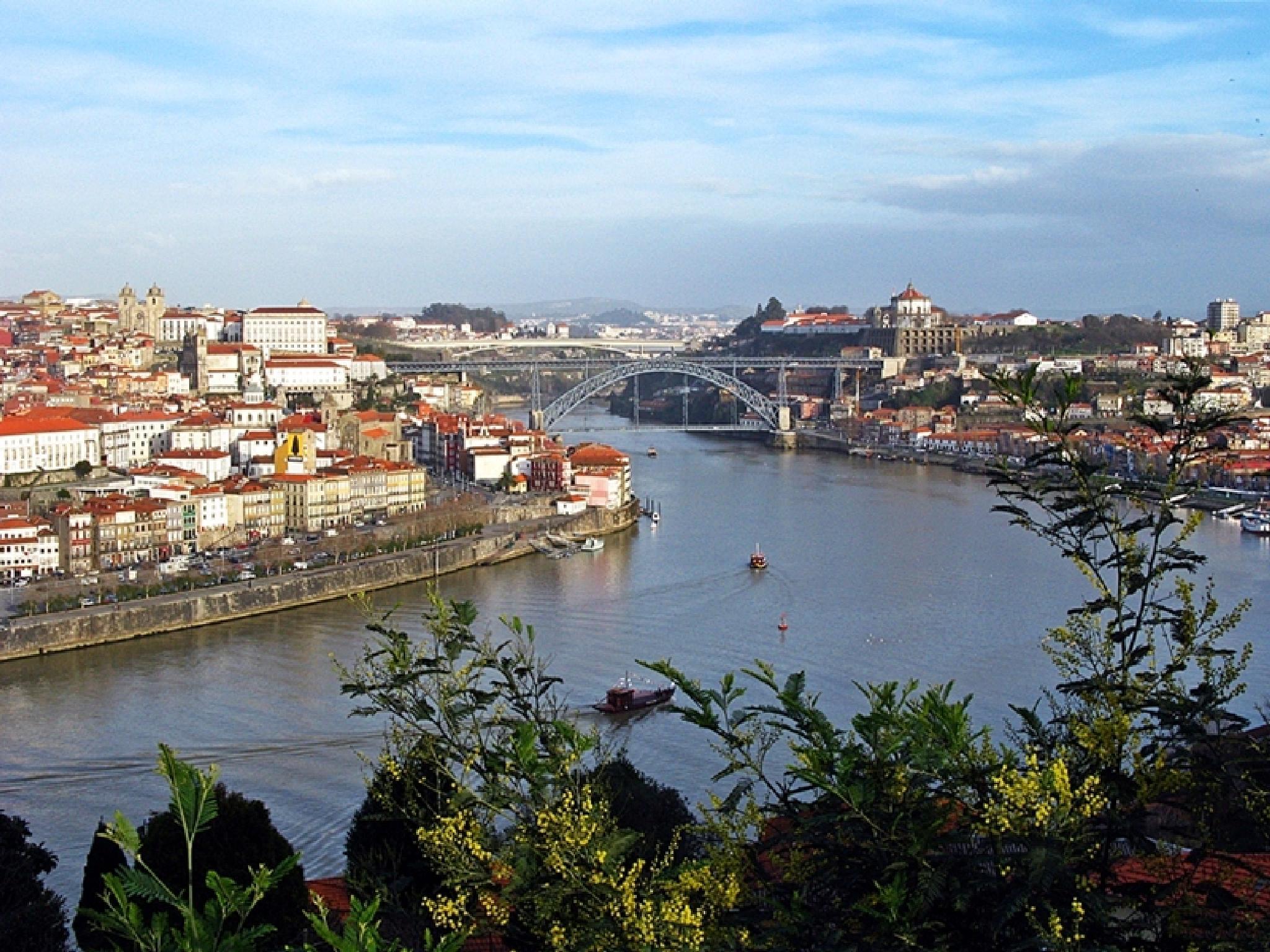 Porto view by GinaCunha