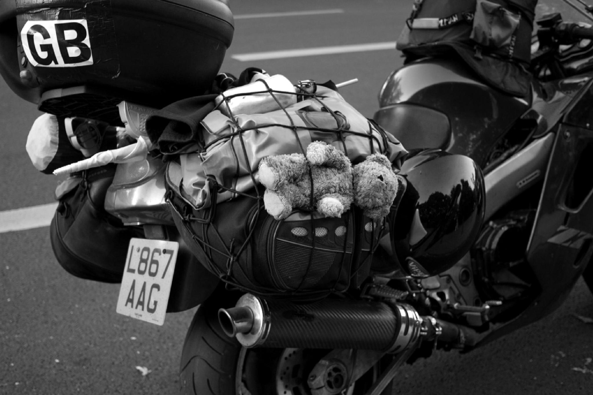 """REAL """"PUPPY"""" BIKER ! by *DUST & SCRATCHES*"""