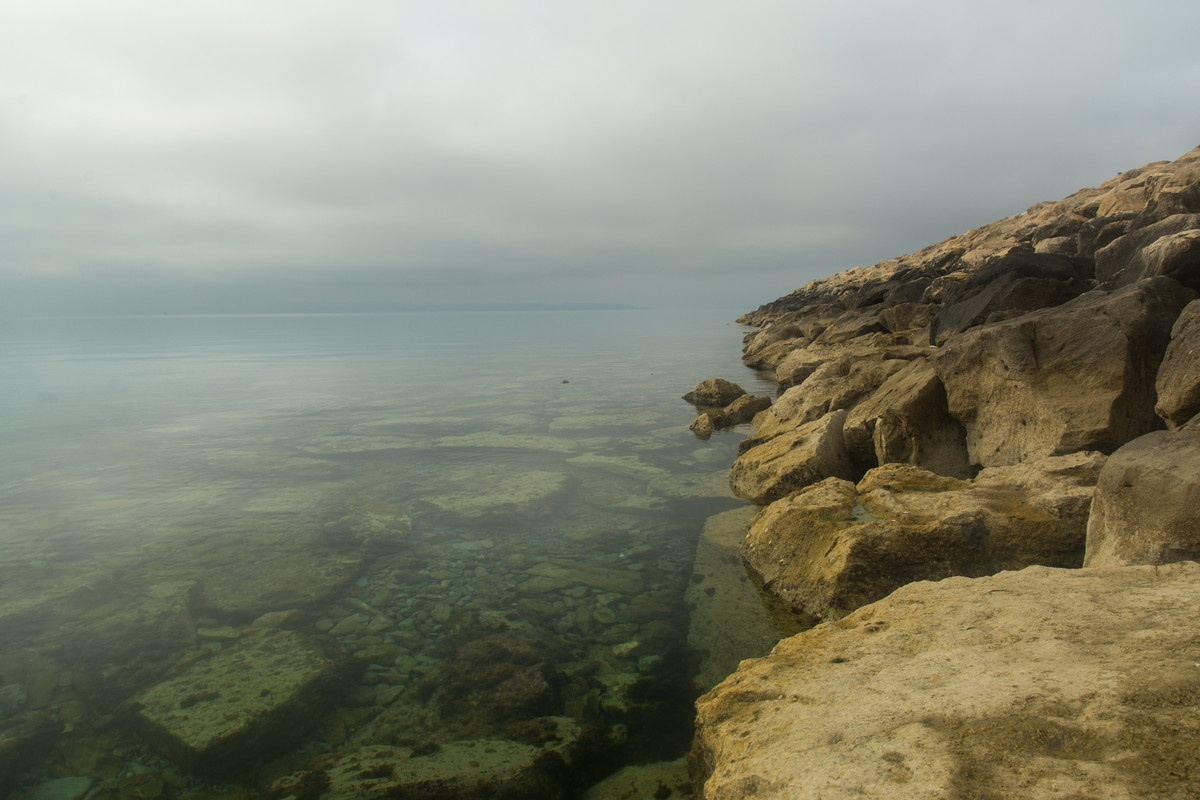 Foggy morning by Drago Sajc-Budija