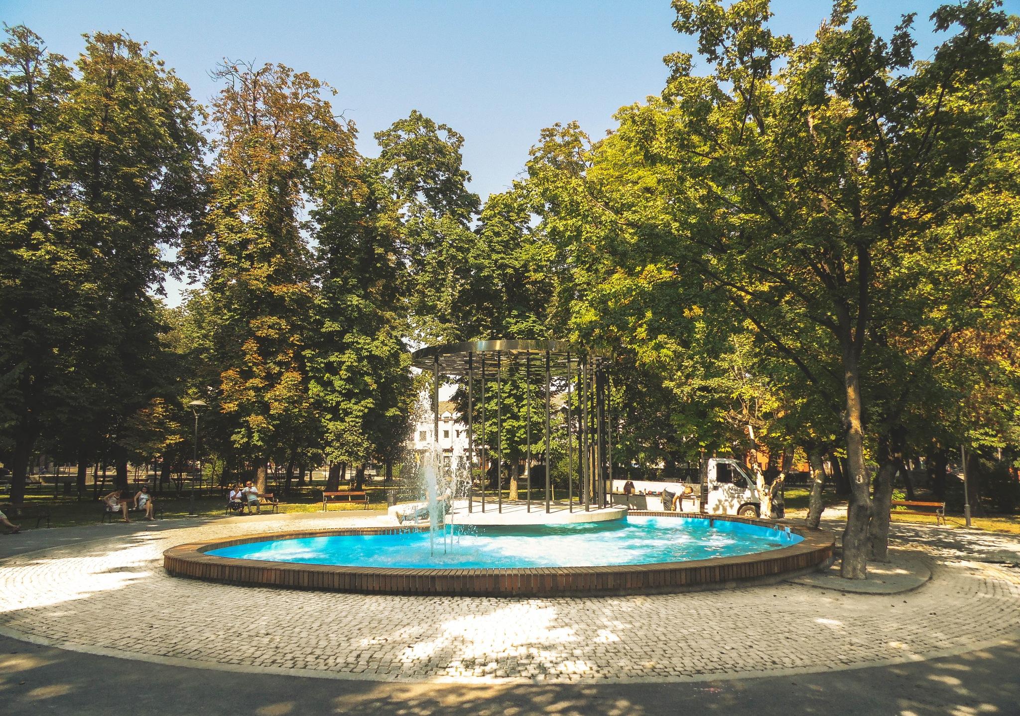 Fountain in the park by Branislav