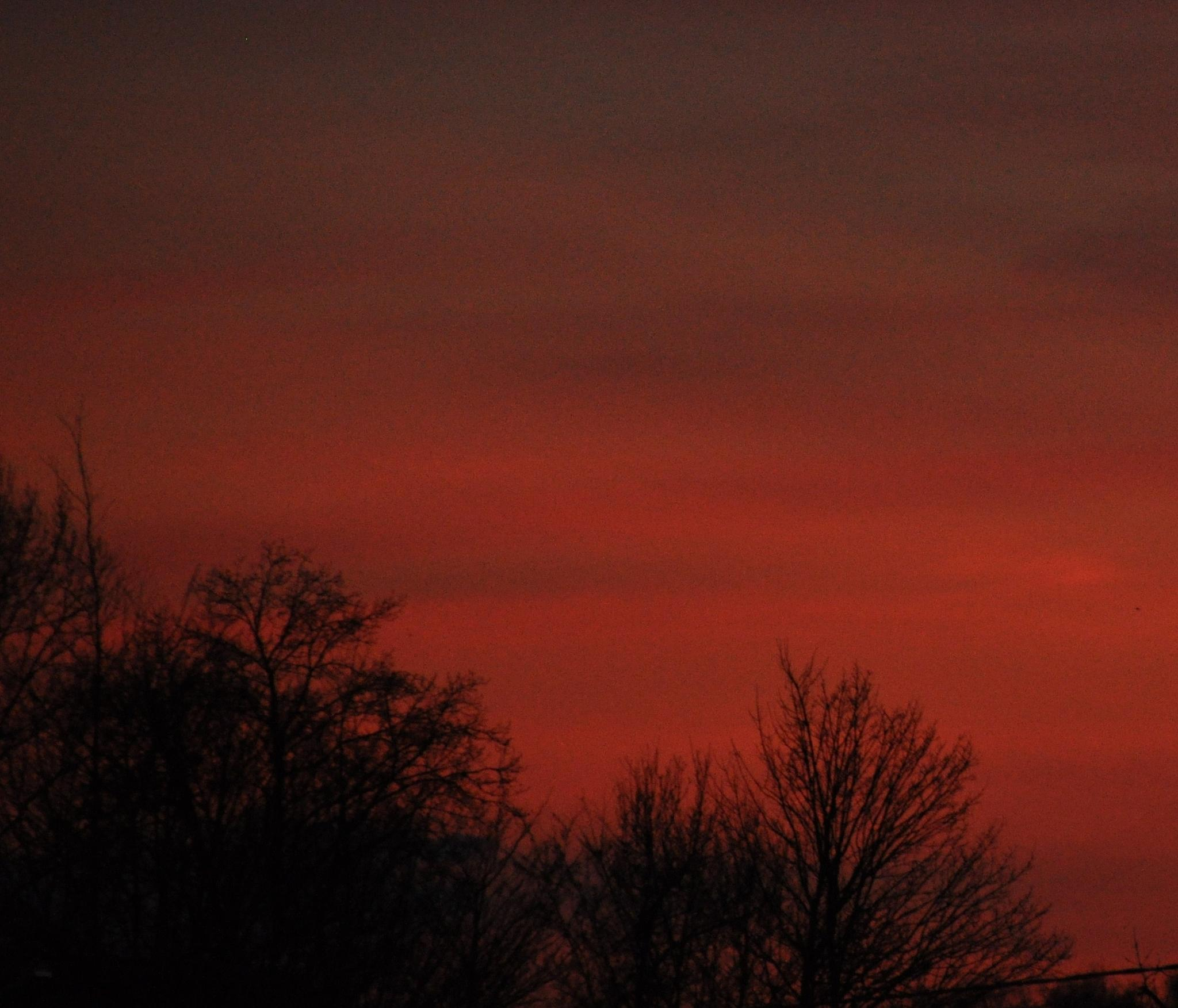 pfft red evening, taken this evening by Marc Verlee
