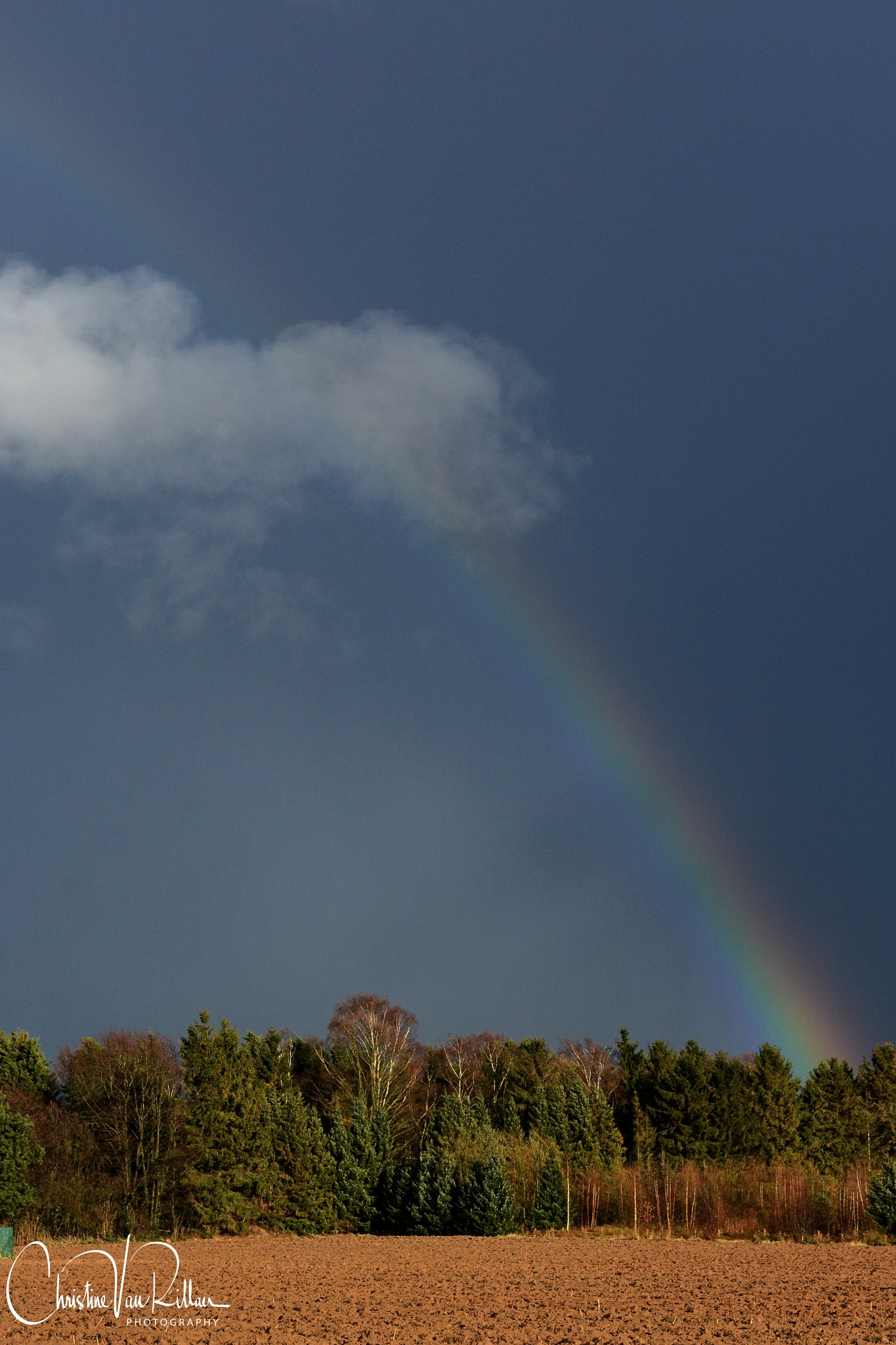 Rainbow 12/03/18 by Chris