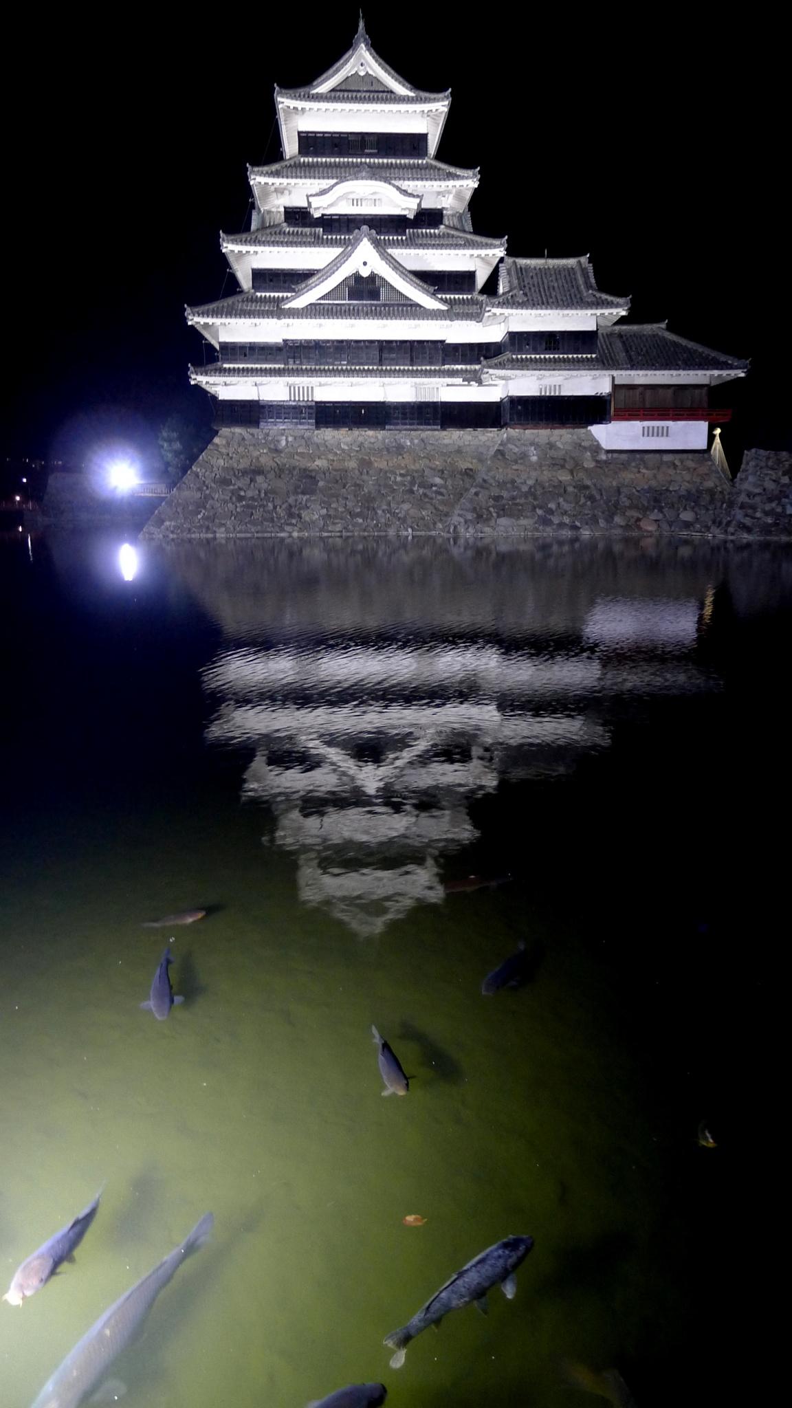 Matsumoto-jo Castle by kunihiko.yasuda.5